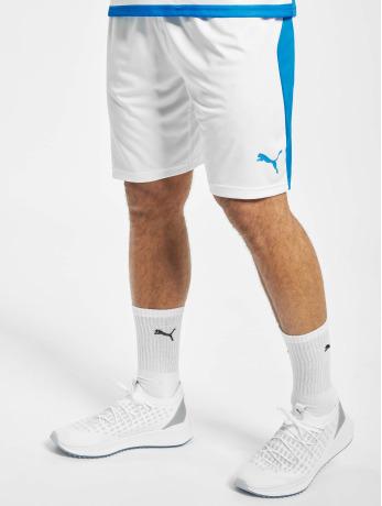 puma-performance-manner-shorts-liga-in-wei-