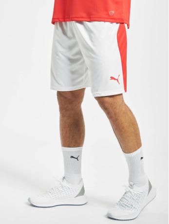 puma-performance-manner-shorts-performance-liga-in-wei-
