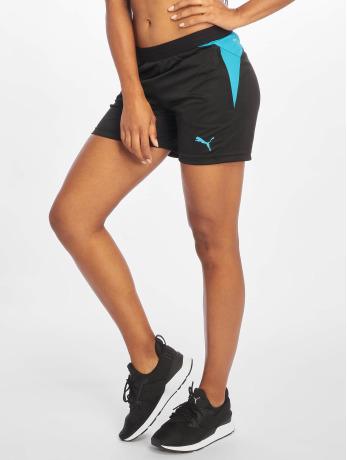 puma-performance-frauen-sport-shorts-training-in-schwarz