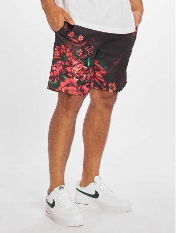 criminal-damage-manner-shorts-kai-in-schwarz