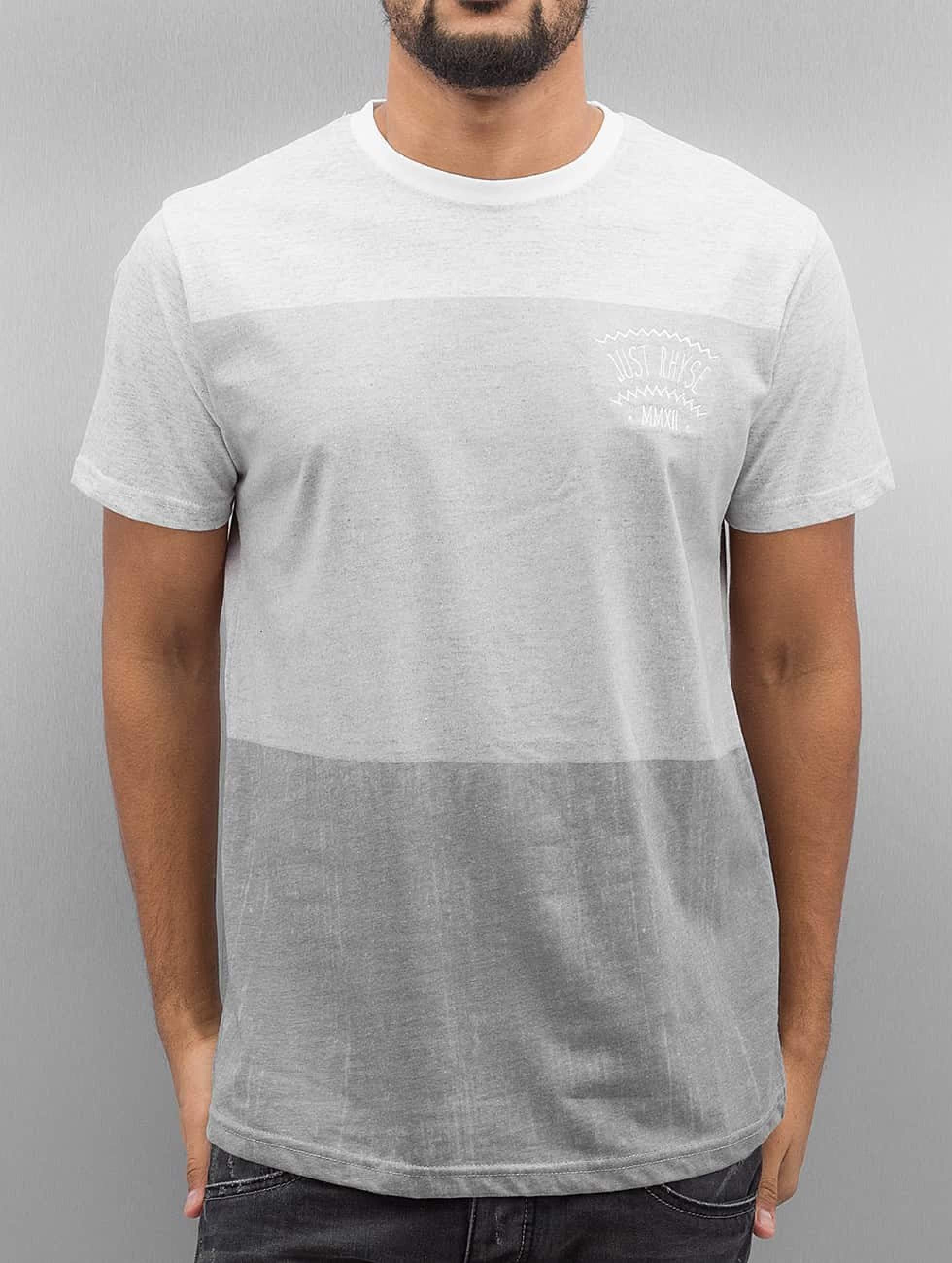Just Rhyse / T-Shirt Karluk Lake in grey S