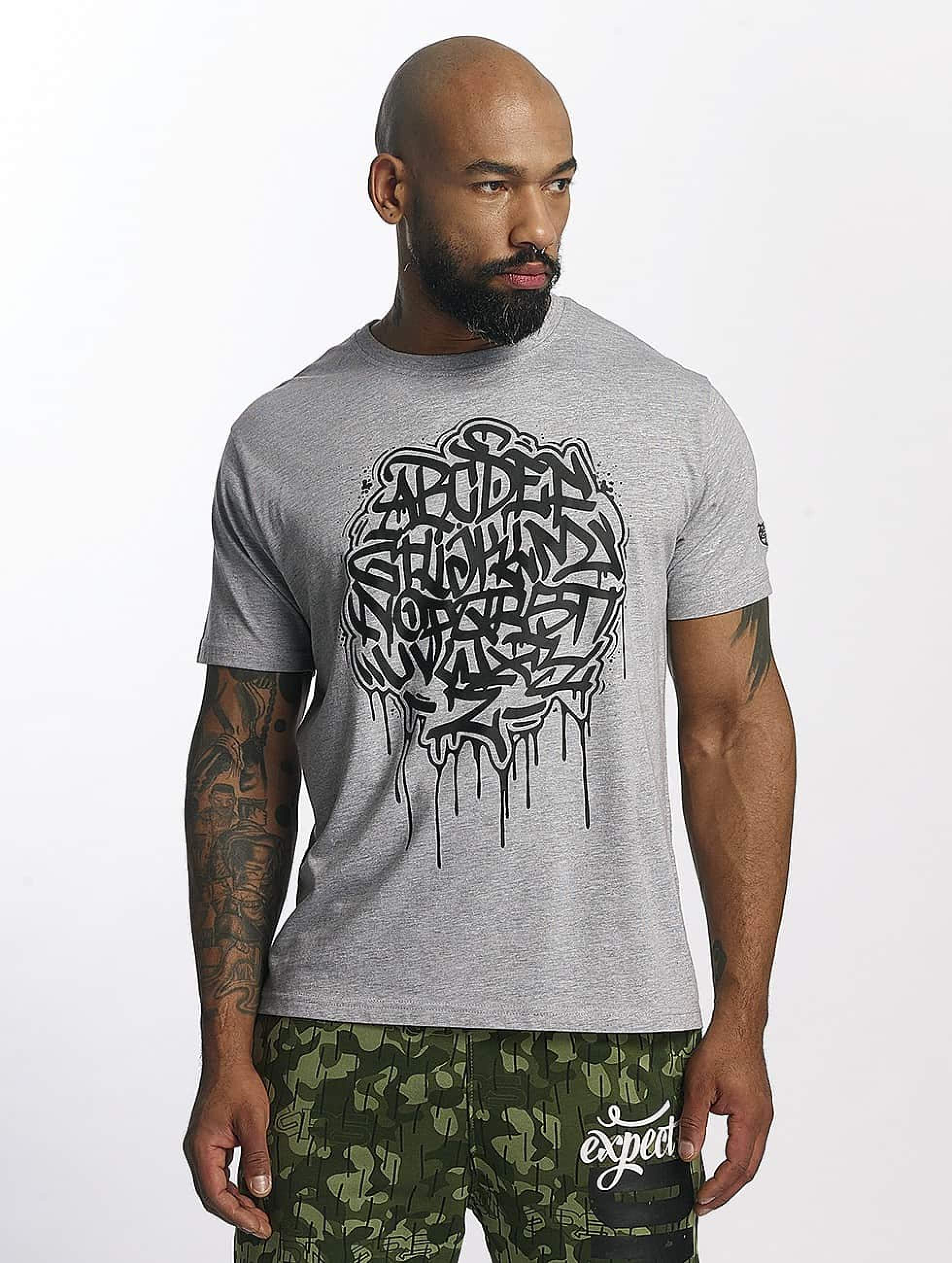 Dangerous DNGRS / T-Shirt Alpha DMARK in grey S