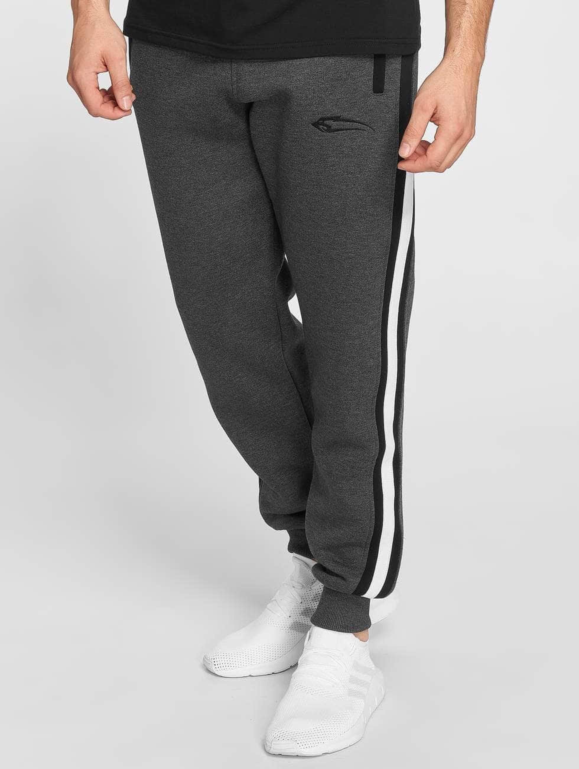 Smilodox | Slack gris Homme Pantalons de jogging