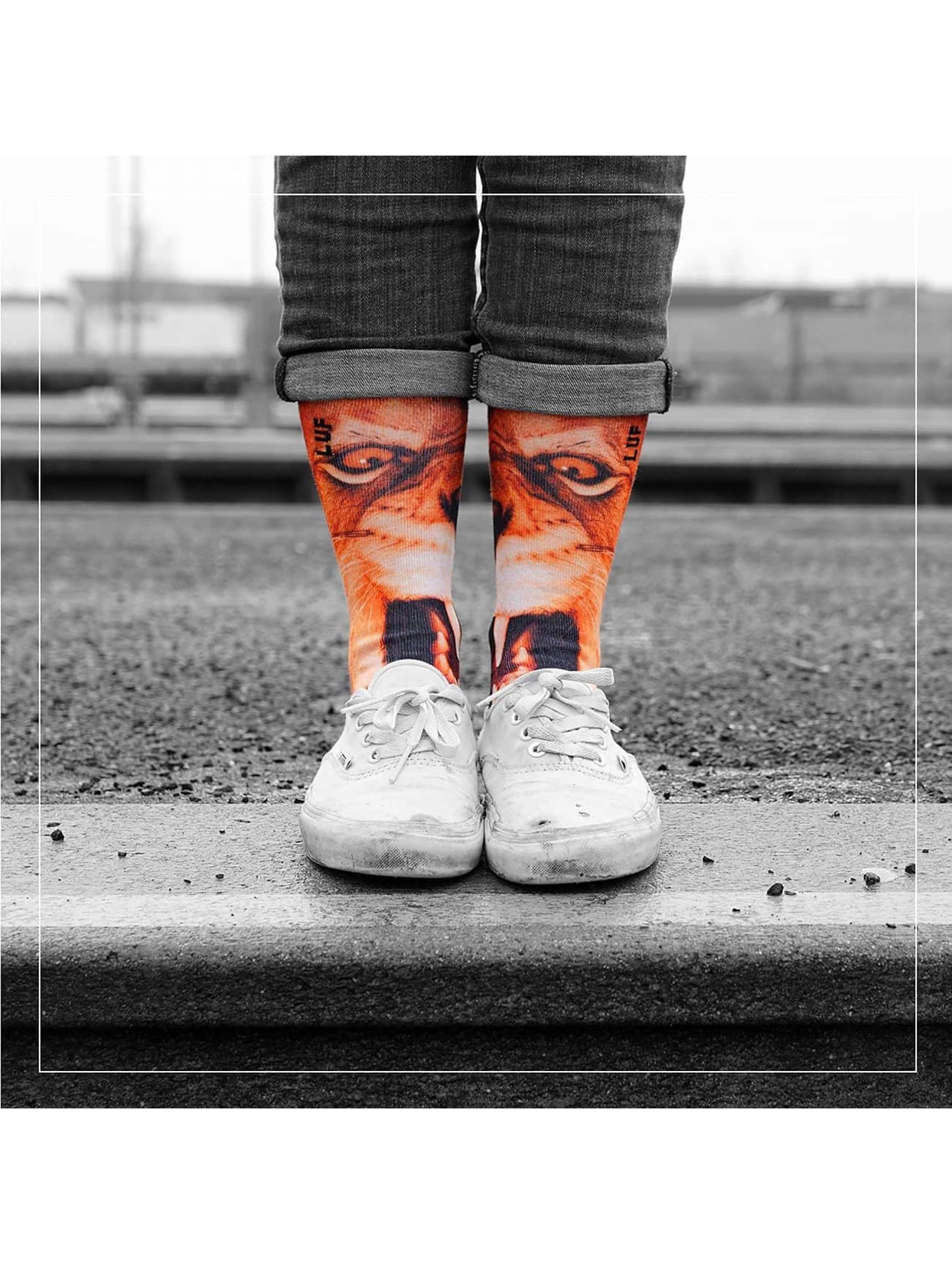 LUF SOX Männer,Frauen Socken Lion in bunt
