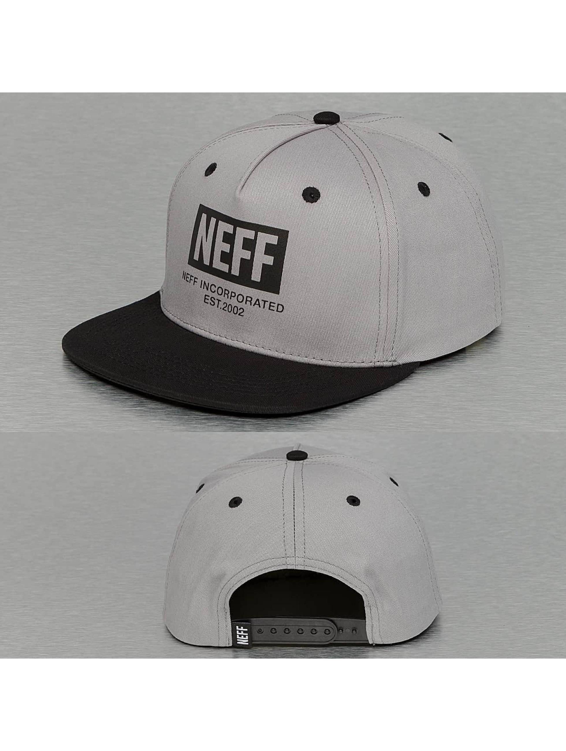 NEFF Männer,Frauen Snapback Cap New World in grau