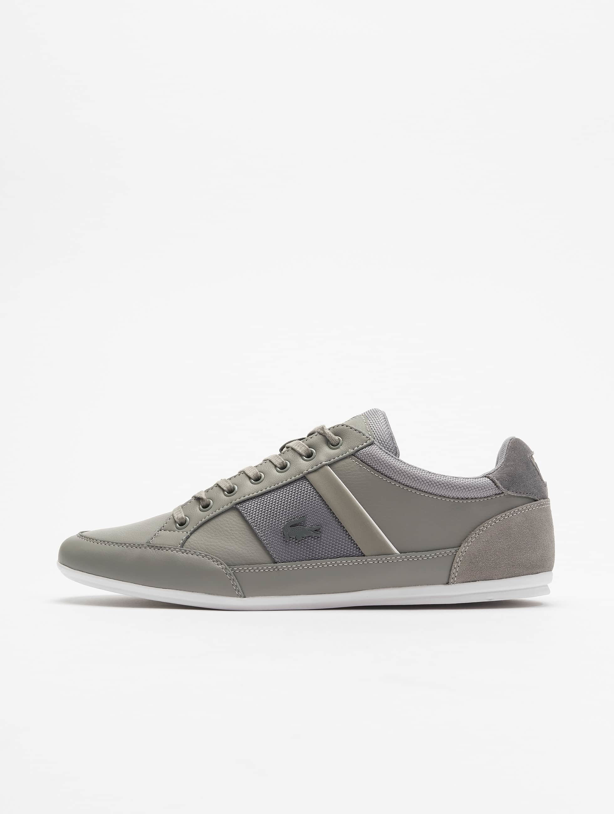 Lacoste Männer Sneaker Chaymon 116 1 SPM in grau