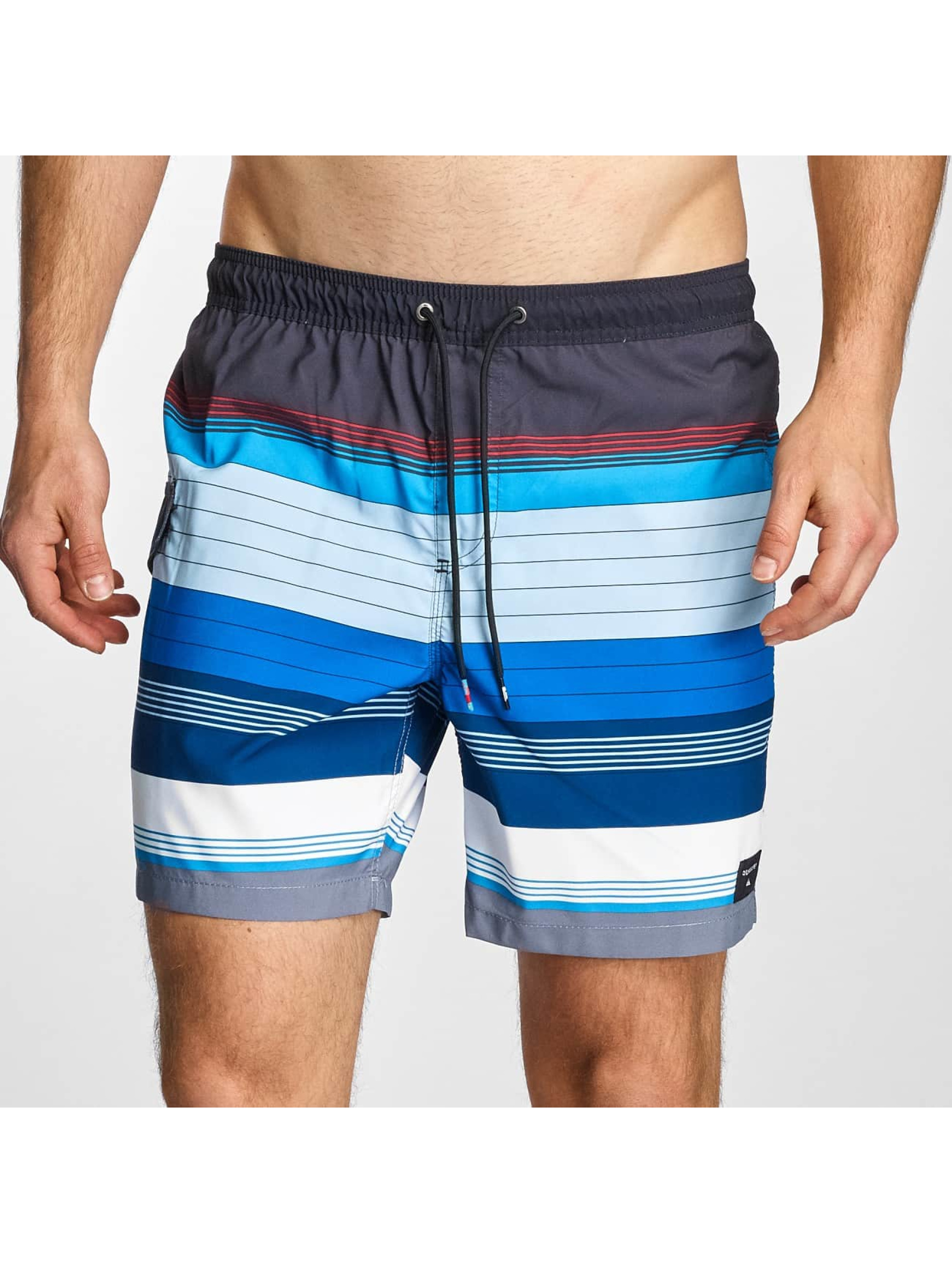 Quiksilver Männer Badeshorts Swell Volley 17 in blau