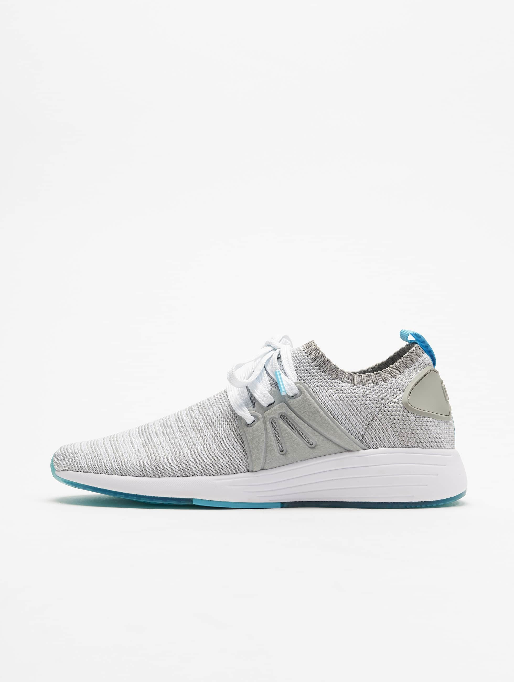 Project Delray Männer,Frauen Sneaker Project Delray Wavey in grau