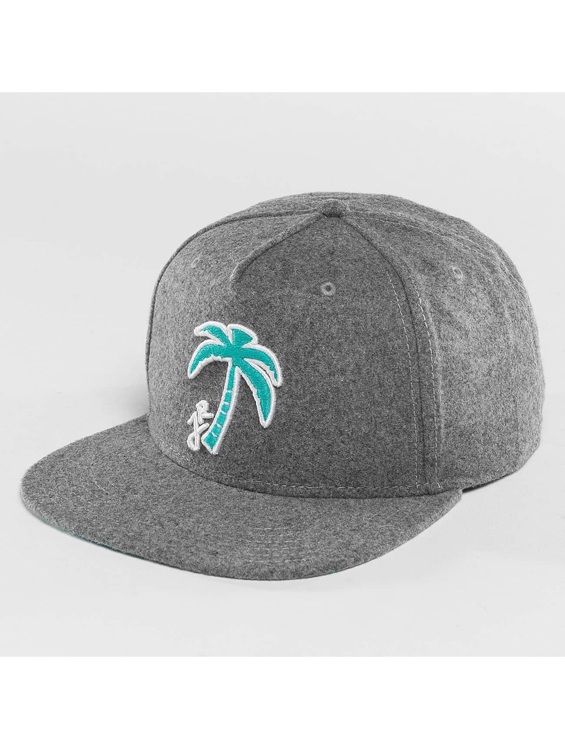Just Rhyse / Snapback Cap Palm Desert in grey Adjustable
