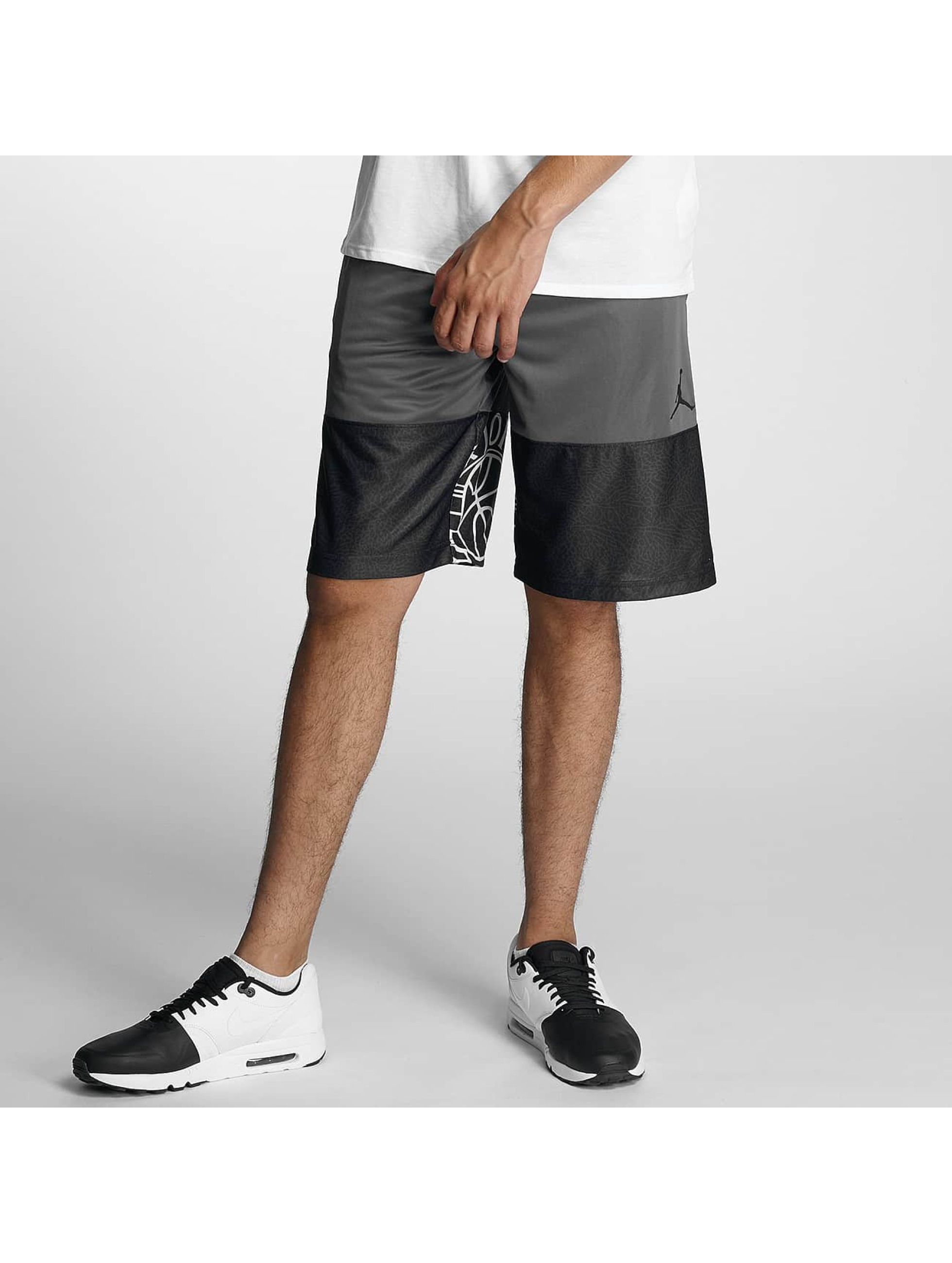 Jordan Männer Shorts Wings Blockout in grau