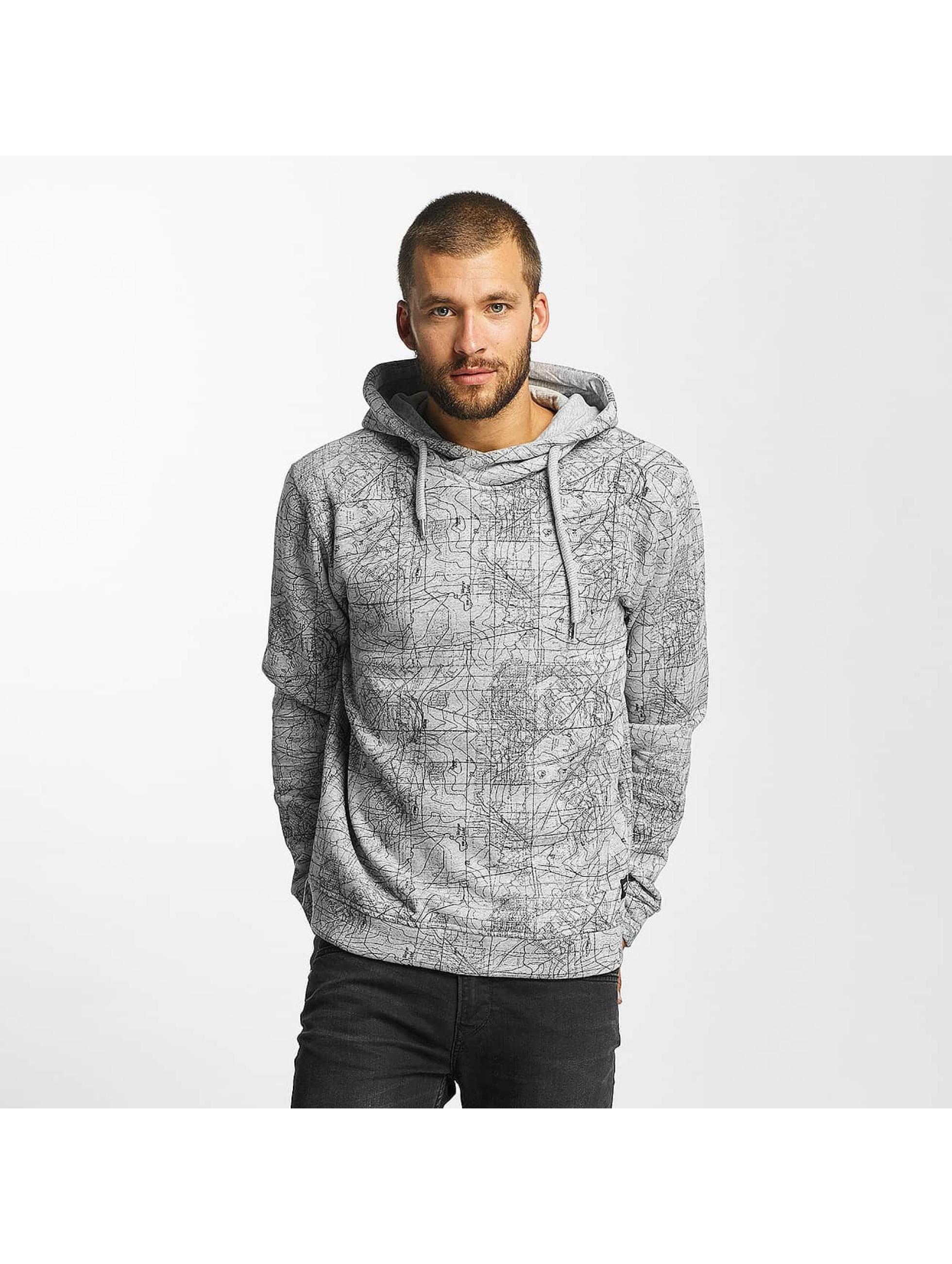 Solid Janan Hoody Light Grey