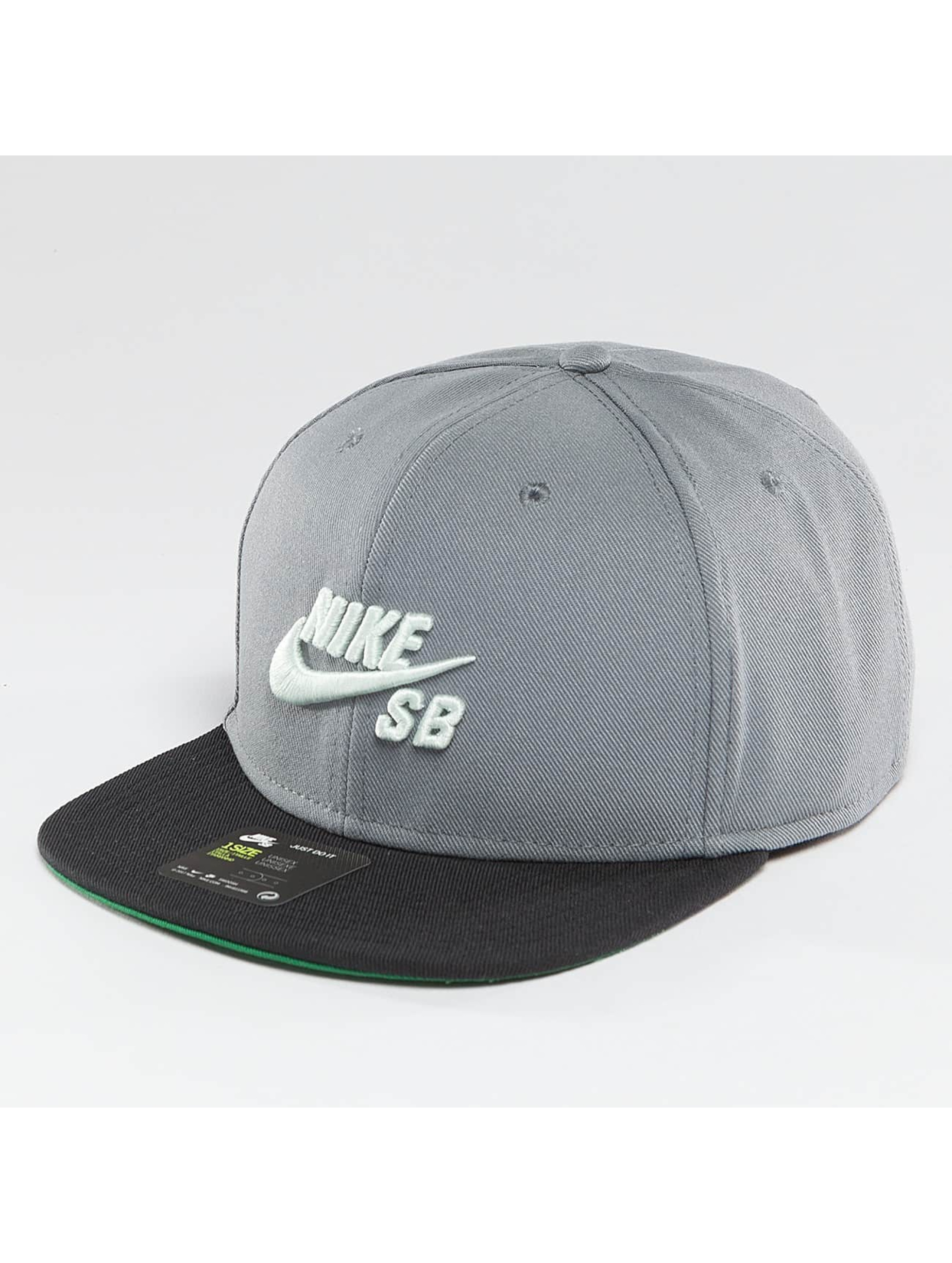 Nike SB Männer,Frauen Snapback Cap Icon in grau