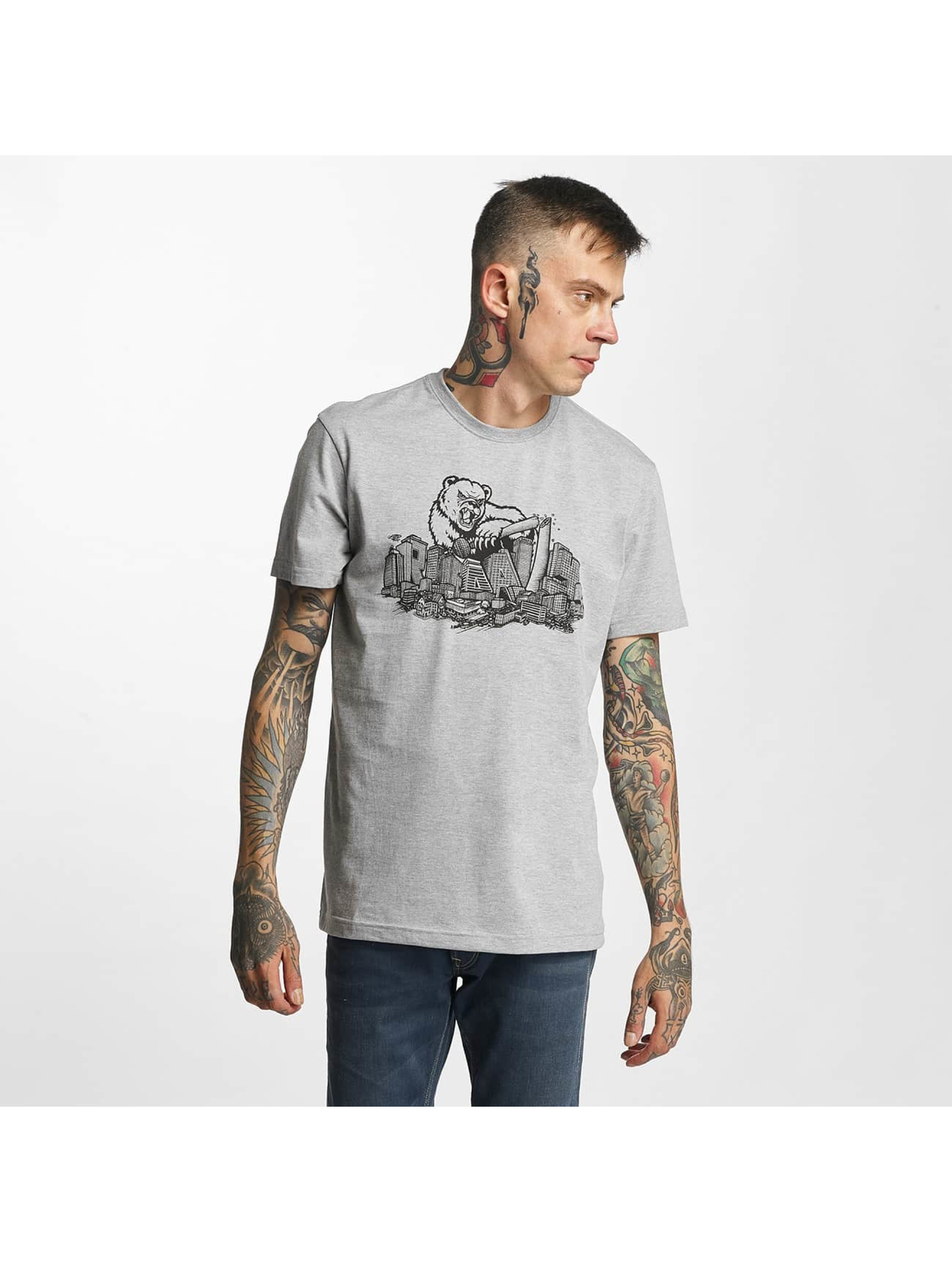 Iriedaily Männer T-Shirt Bearzilla in grau