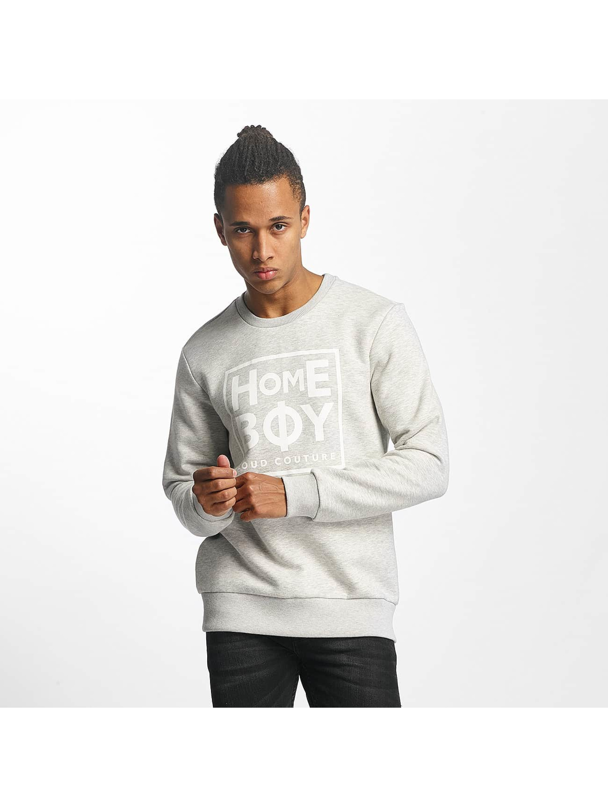 Homeboy Männer Pullover Defenition in grau