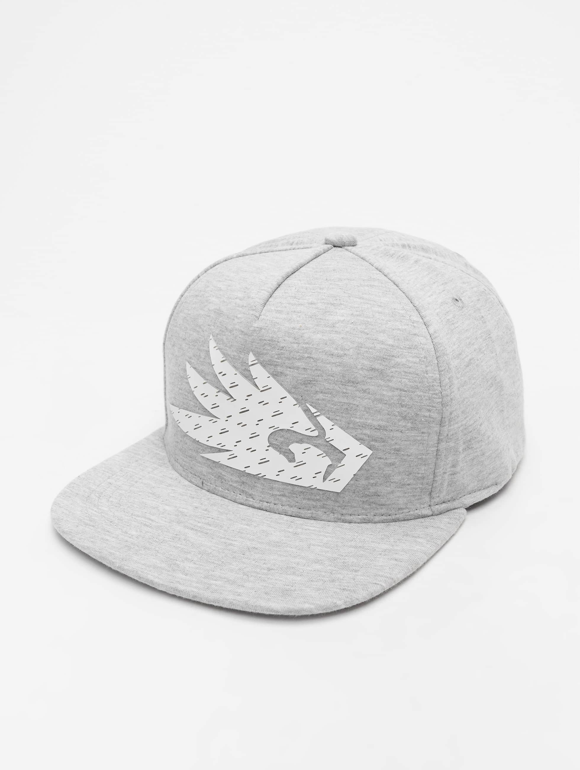 Dangerous DNGRS / Snapback Cap Logo in grey Adjustable