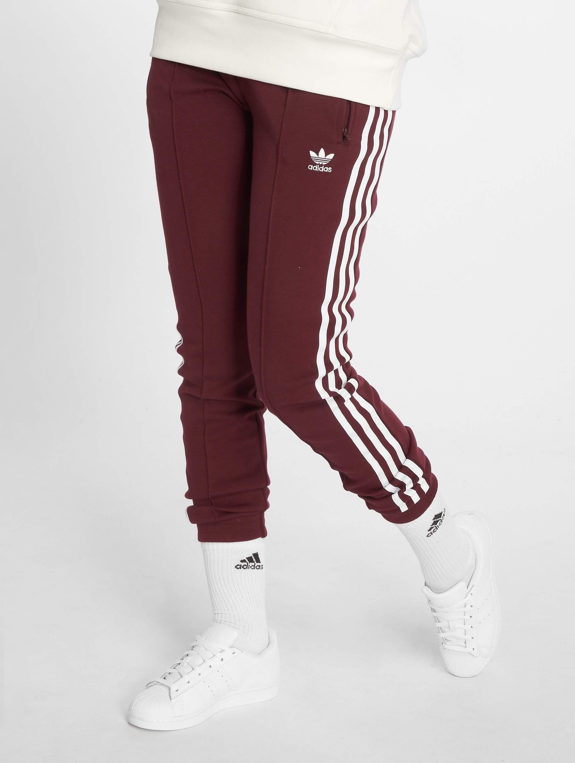 Adidas Originals Clrdo Sst Tp Sweatpants Maroon