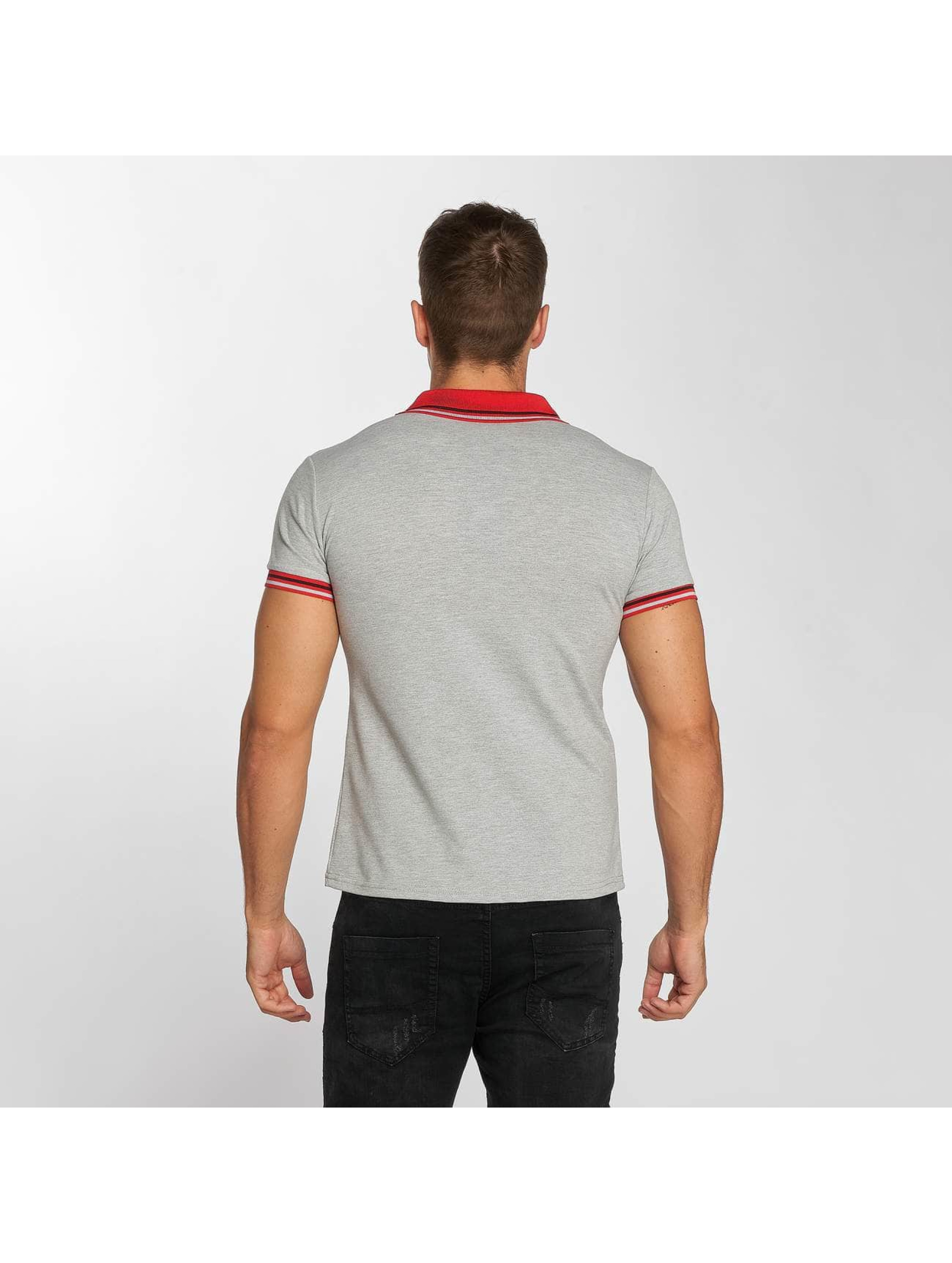 Aarhon Poloskjorter Stripes grå