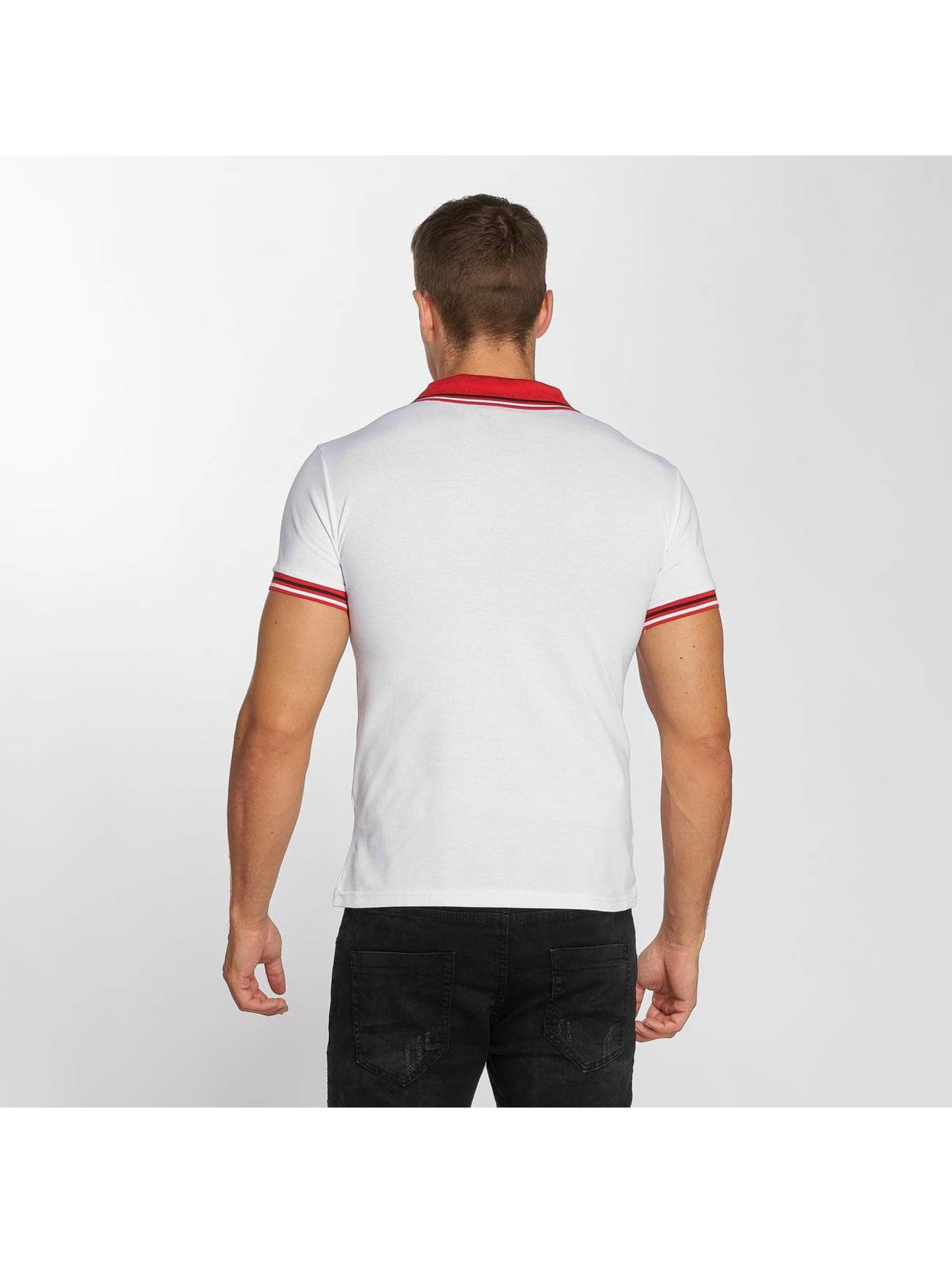 Aarhon Poloskjorter Stripes hvit