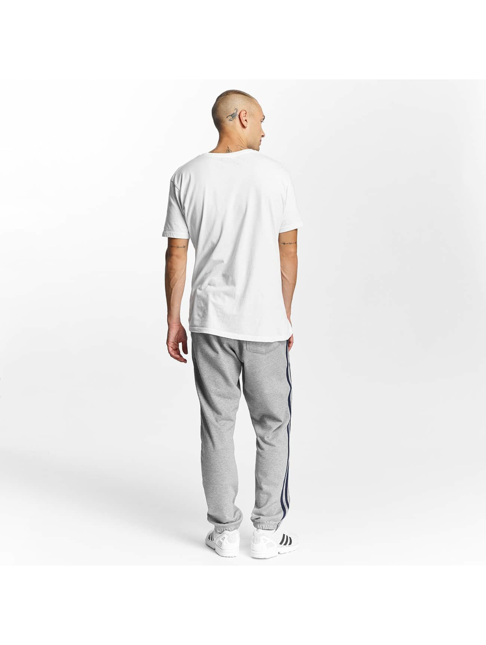adidas originals Spodnie do joggingu BB szary