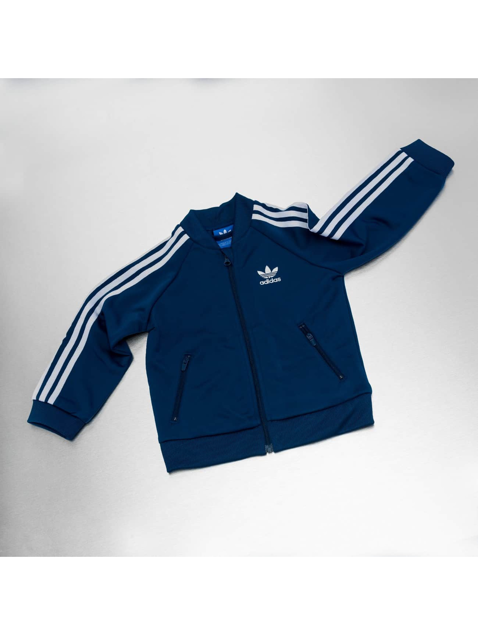 adidas Suits I Superstar blue