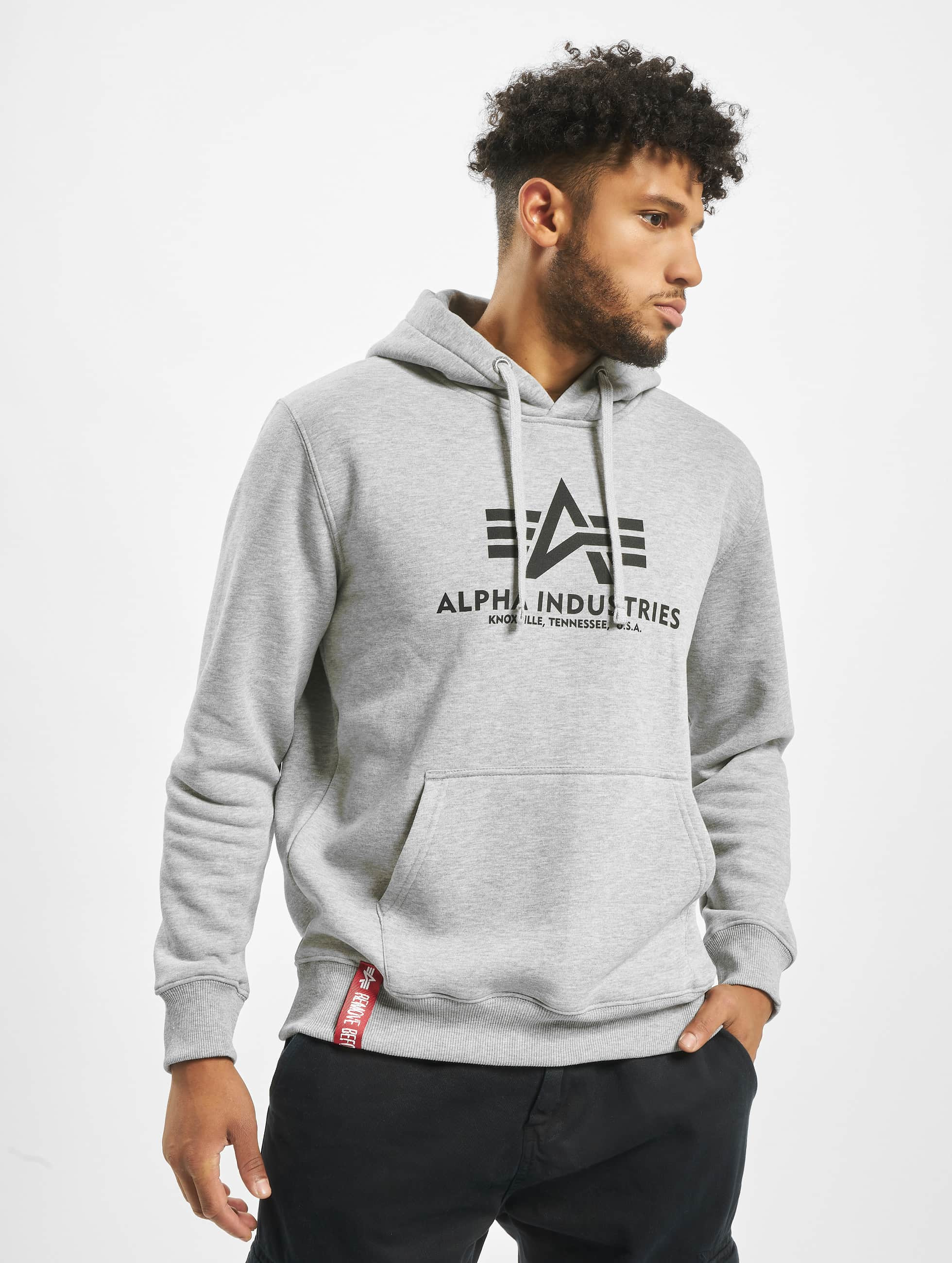 Alpha Industries Hoodie Basic gray