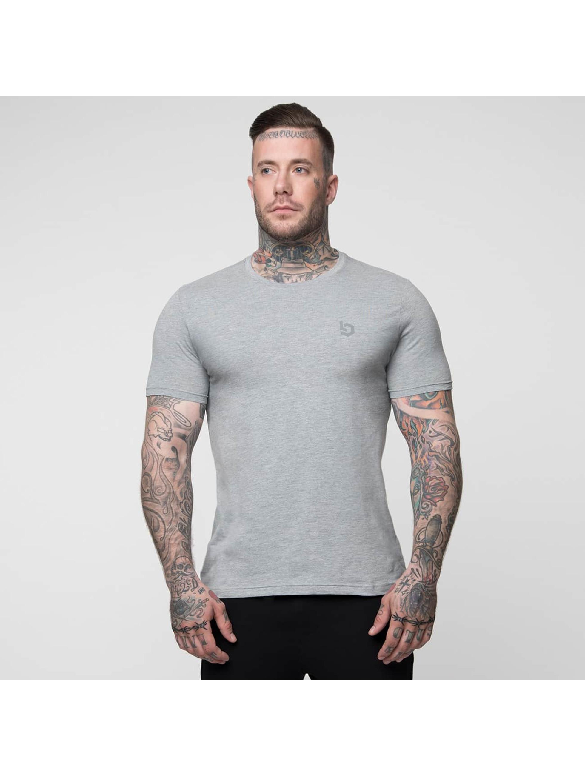 Beyond Limits T-shirts Basic grå