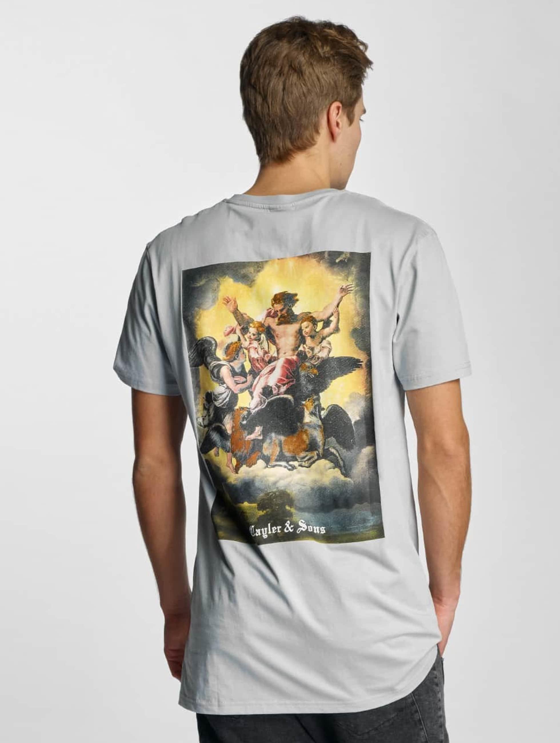 Cayler & Sons T-Shirt Family First grau