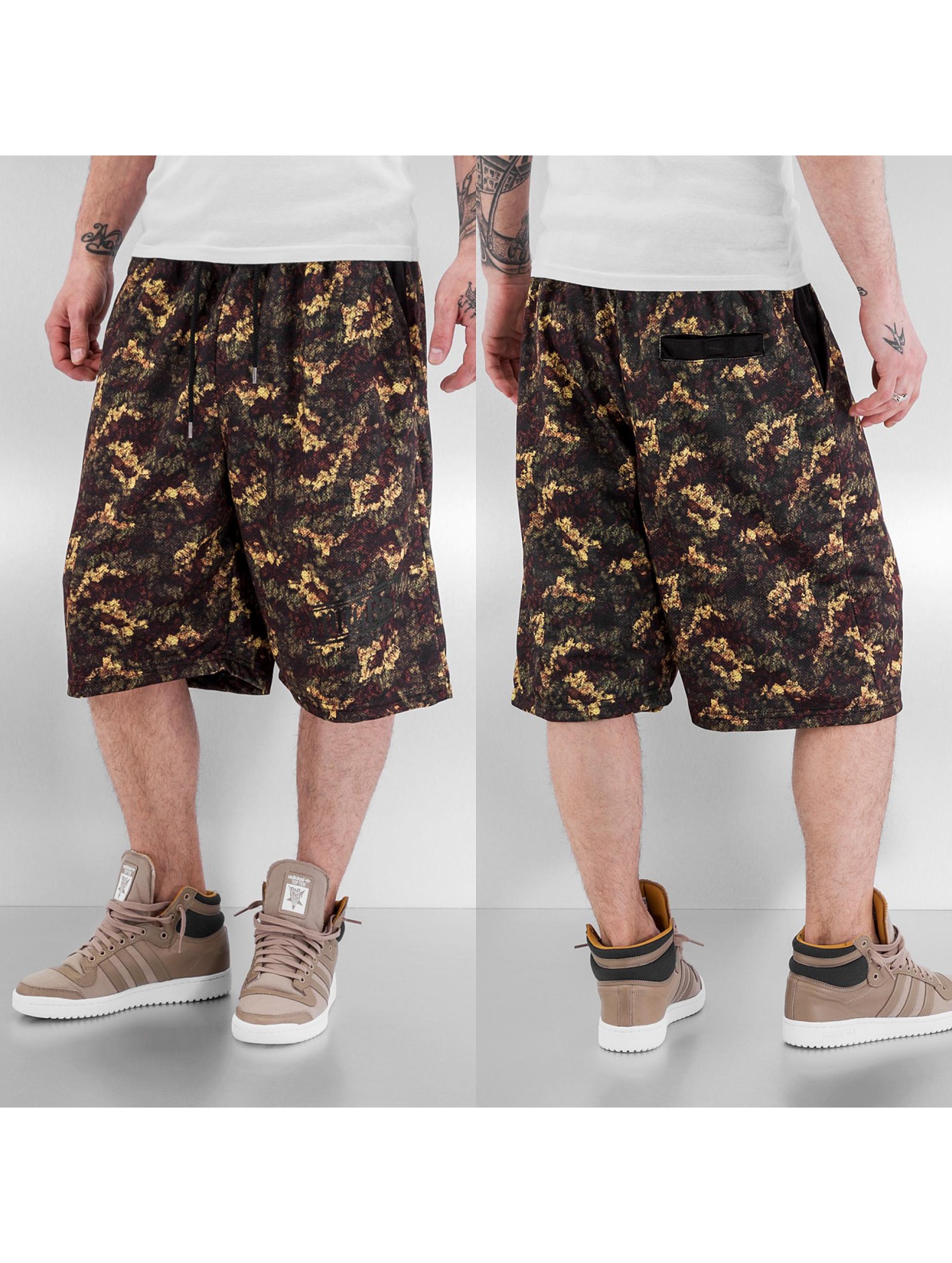 Dangerous DNGRS Shorts Premium grün