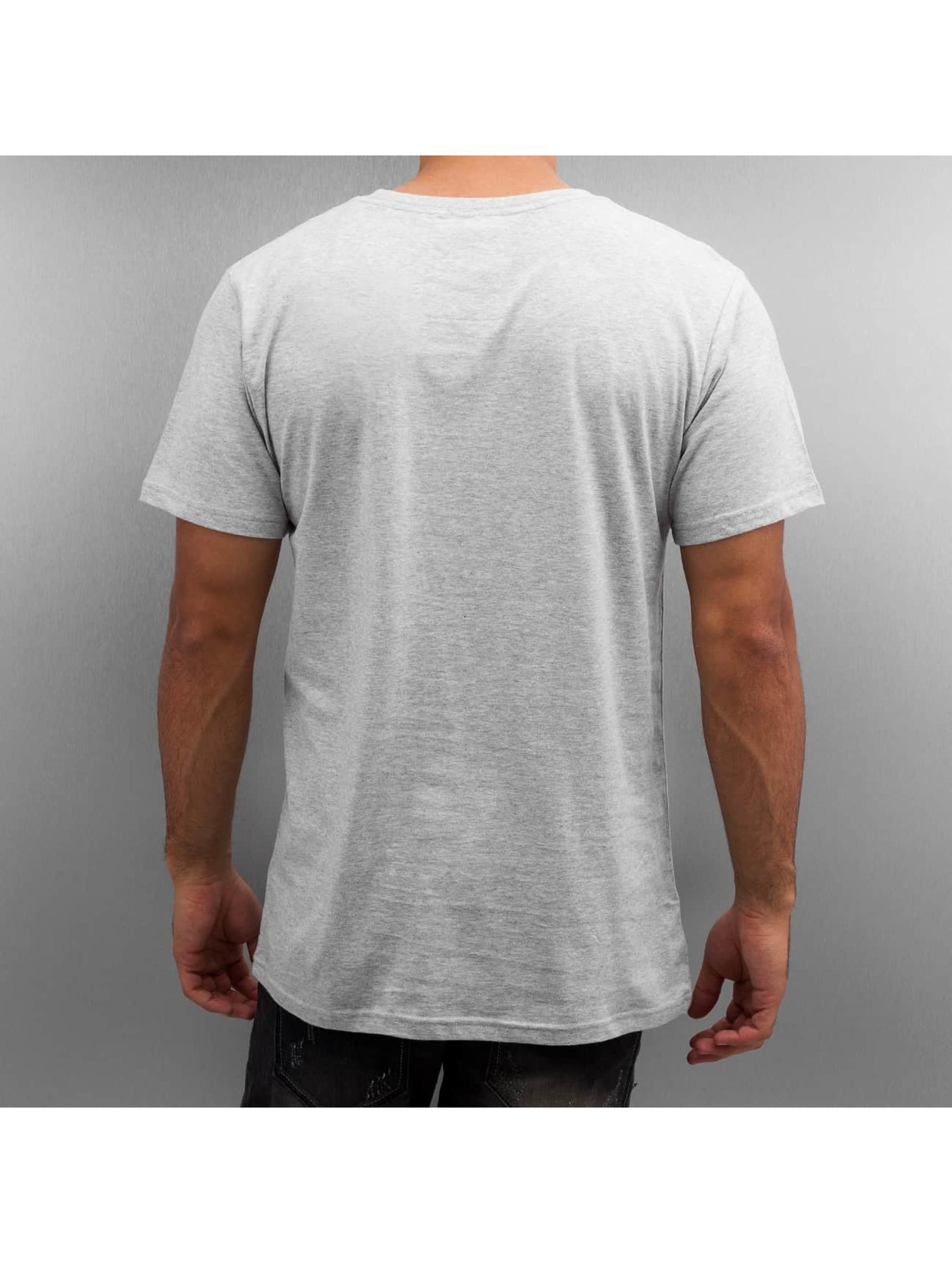 DEDICATED T-Shirt Stockholm Mountain Script grau