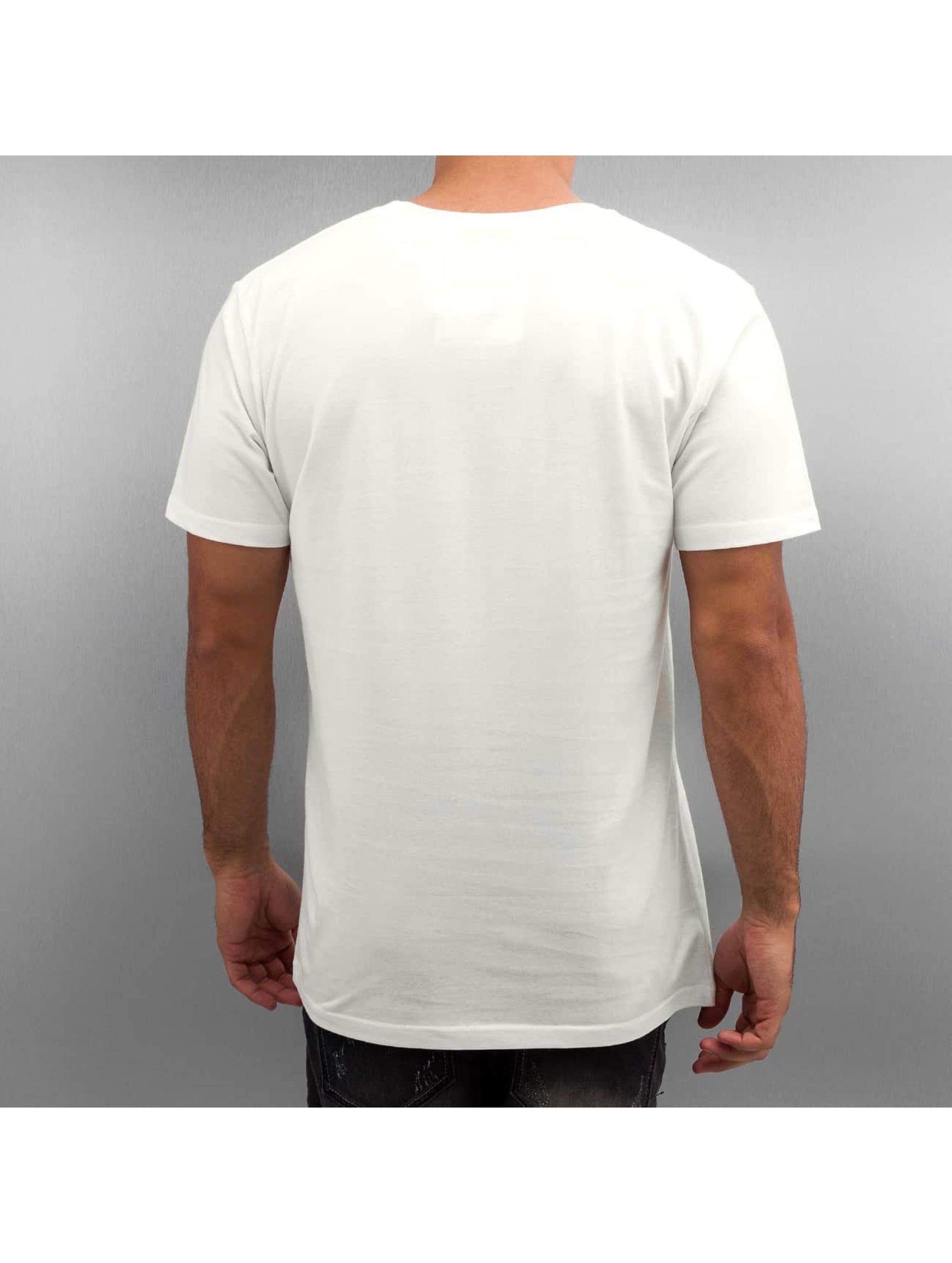 DEDICATED T-Shirt Niklas Nordemar Bear Mountain weiß