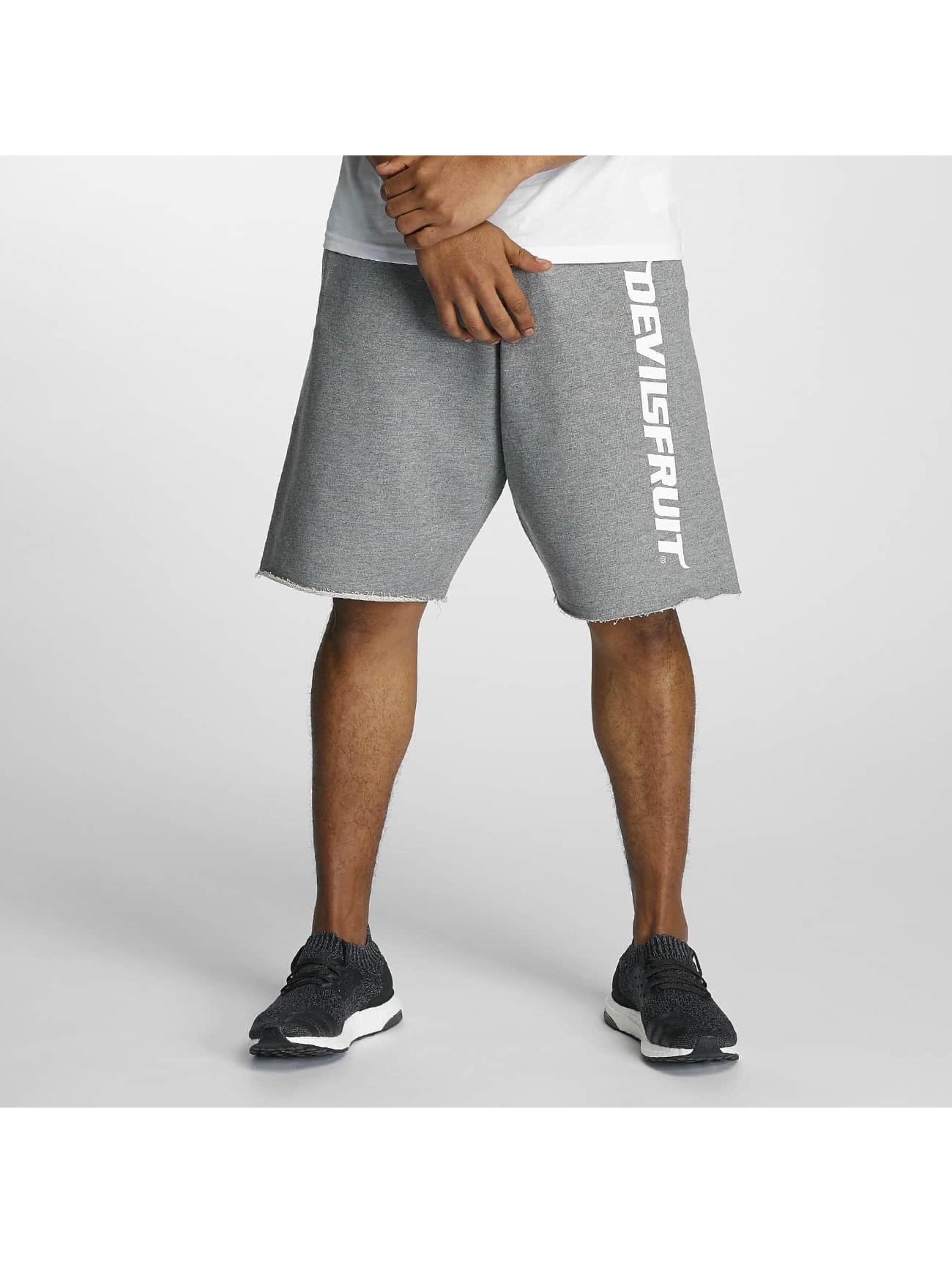 Devilsfruit Pantalón cortos Turn UP gris
