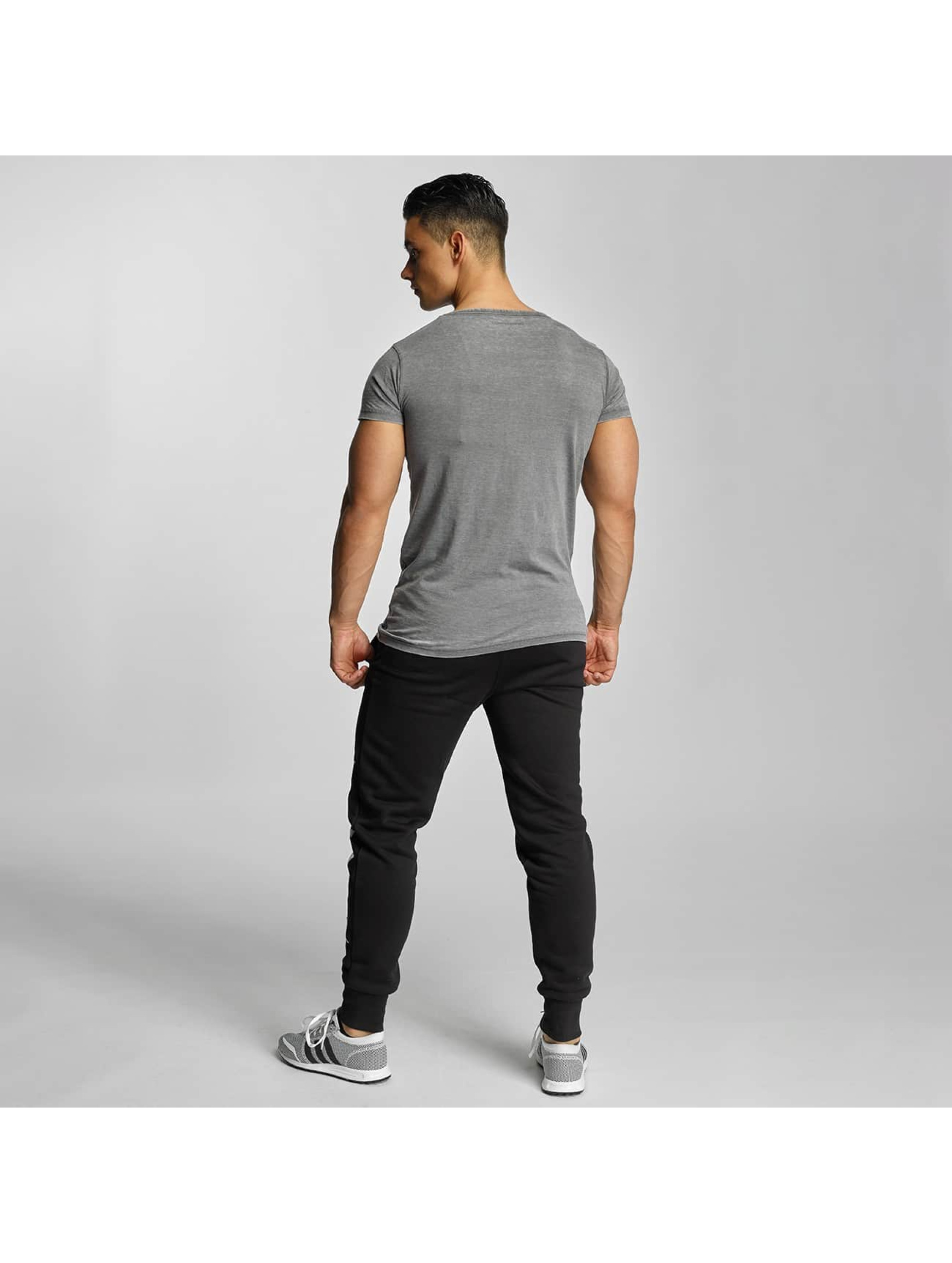 Devilsfruit T-Shirt Basic grau