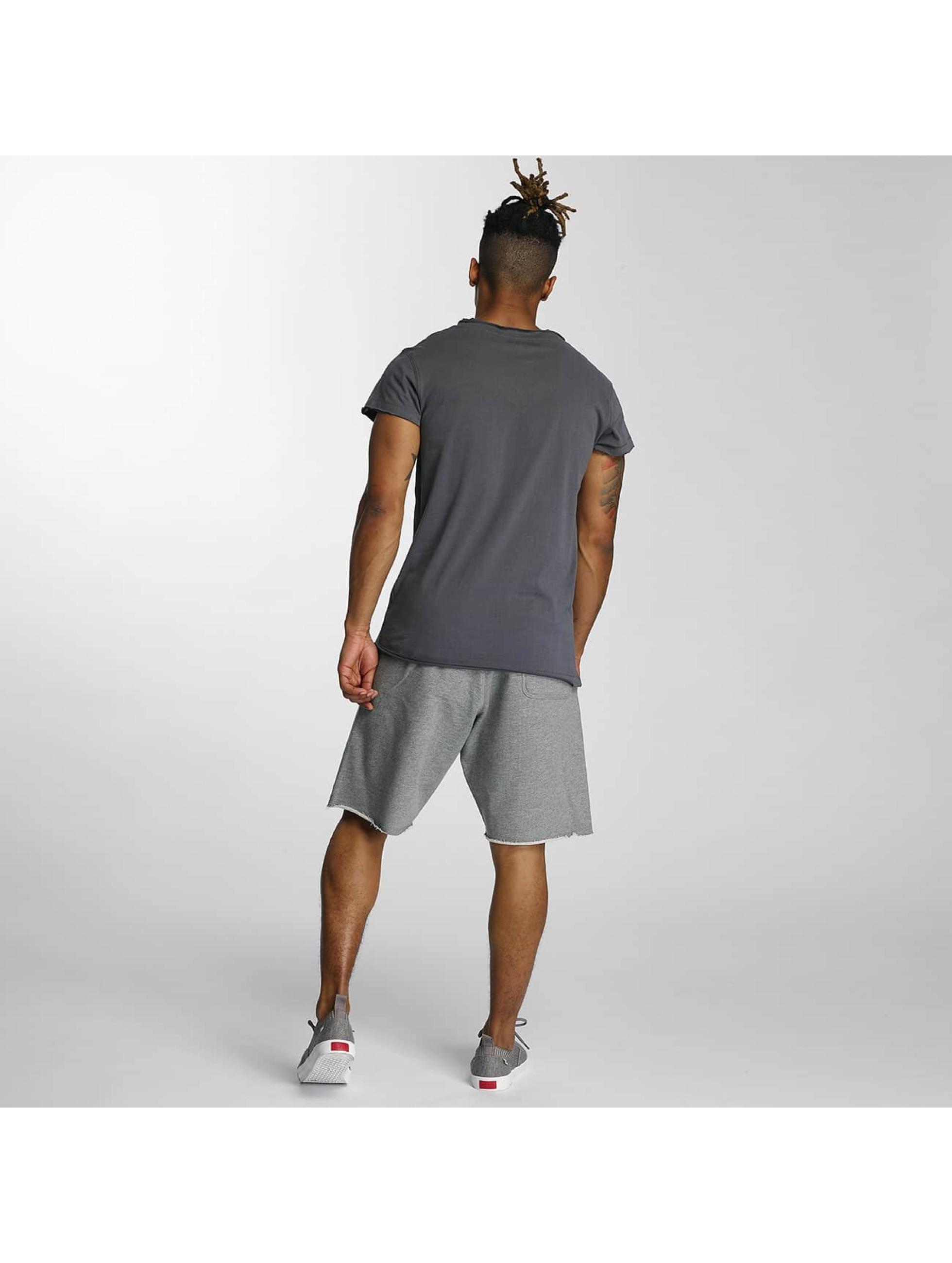Devilsfruit T-Shirt Open grau