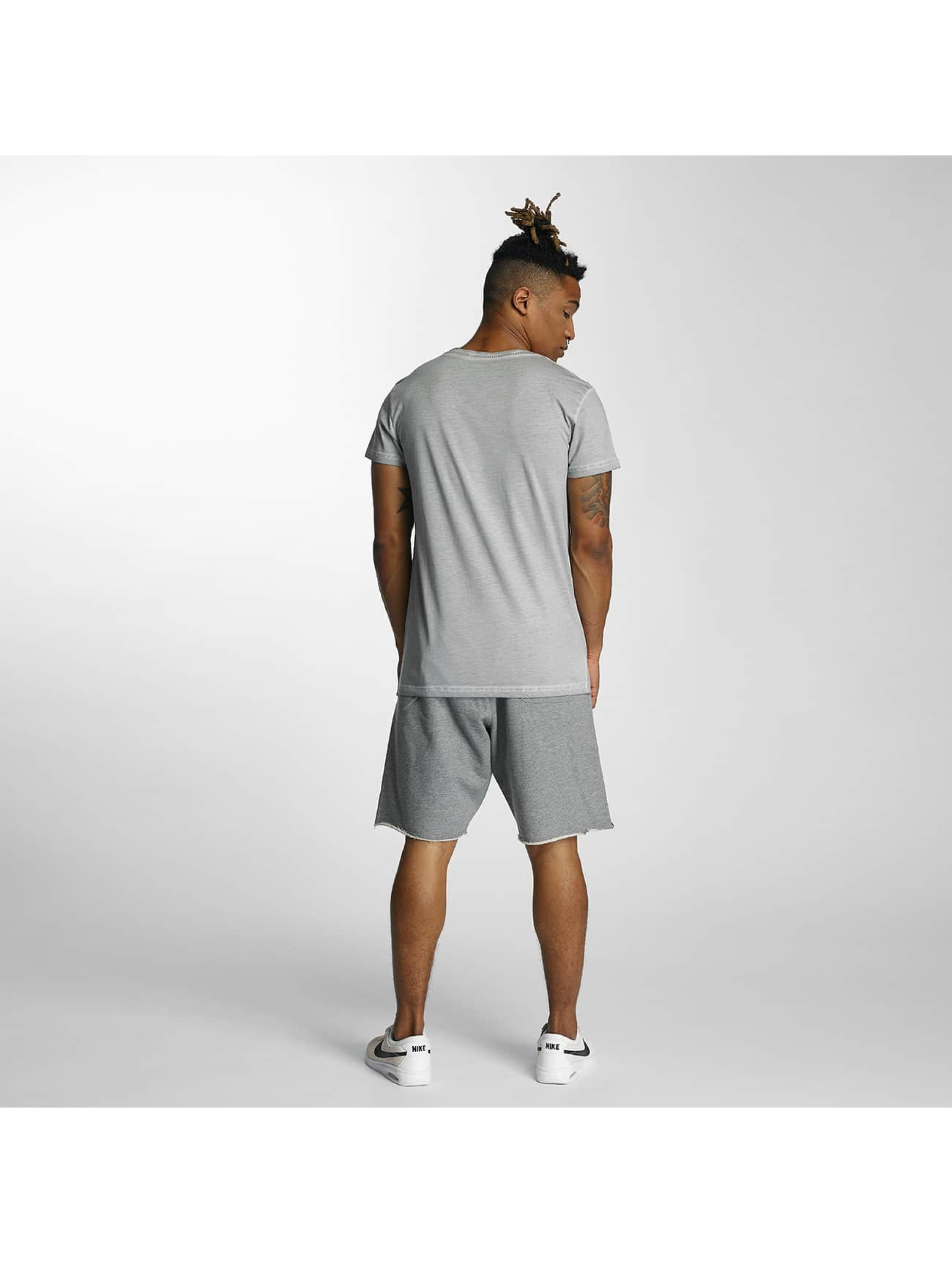 Devilsfruit T-Shirt Holla grau
