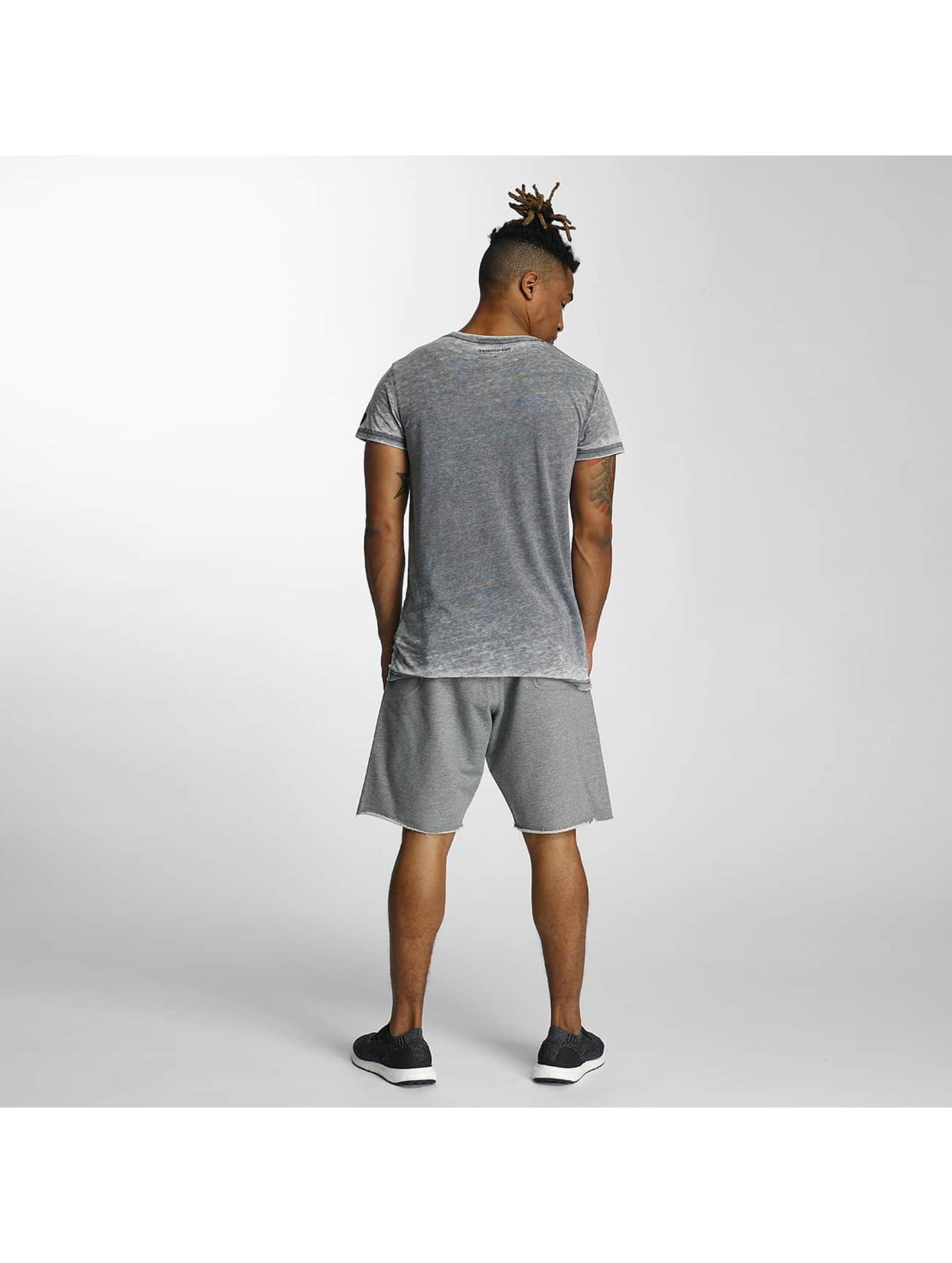 Devilsfruit T-Shirt Ransome grey
