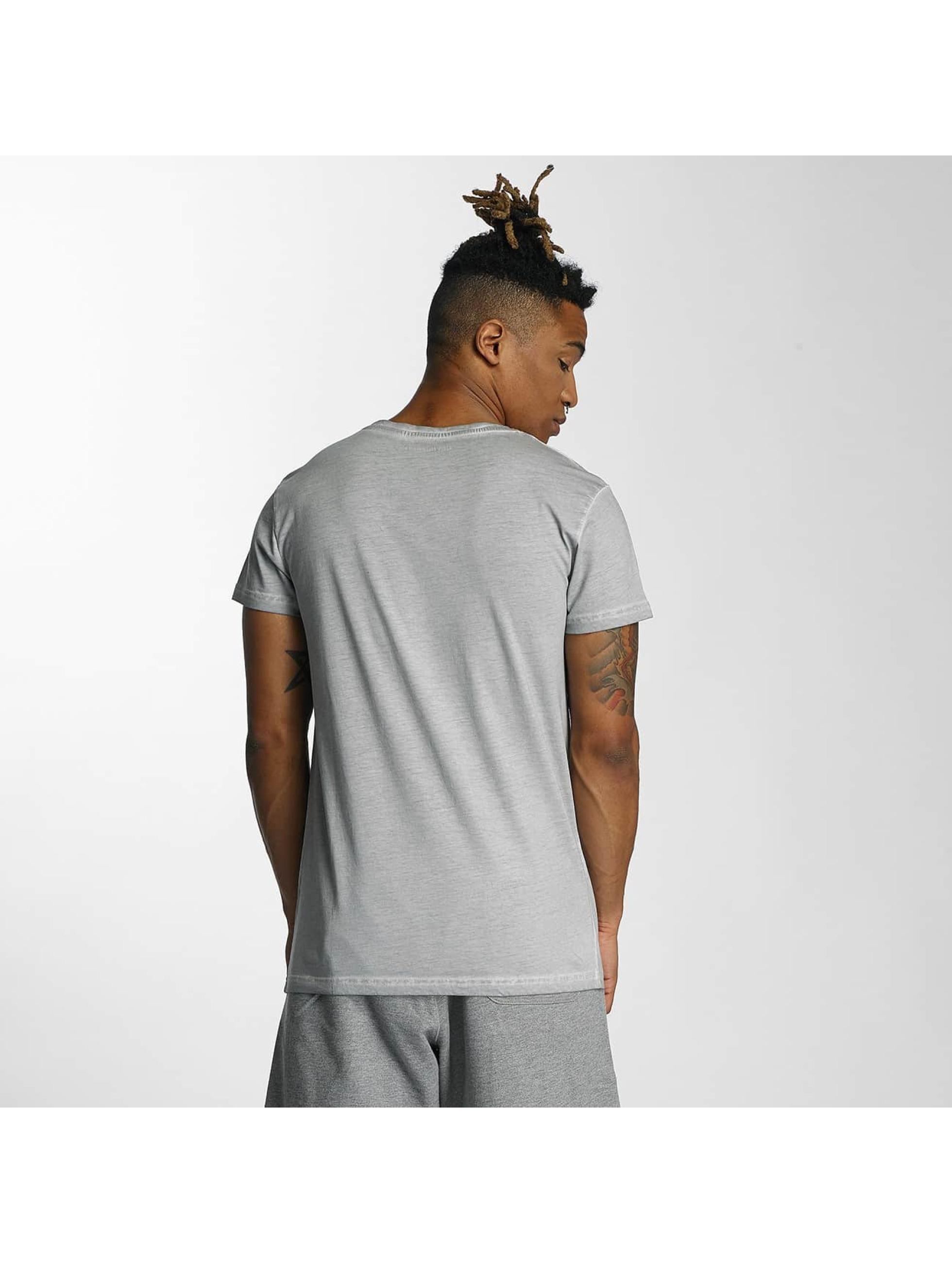 Devilsfruit T-Shirt Holla gris