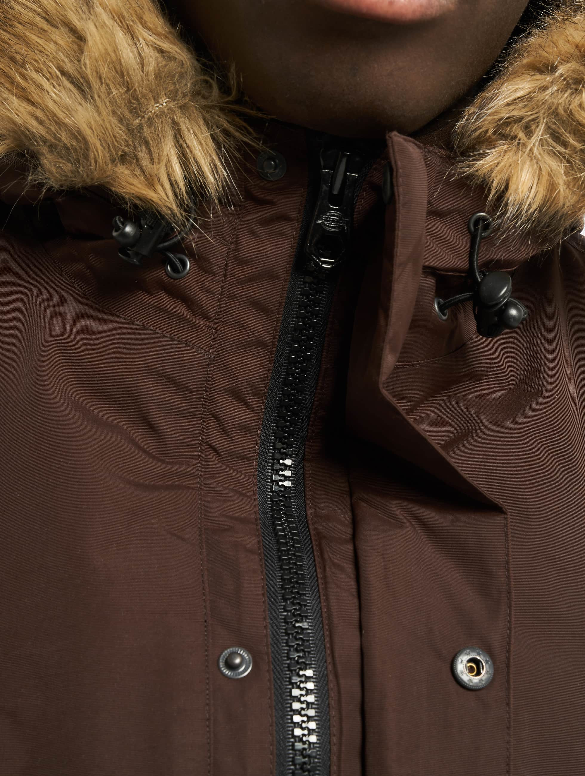 Dickies Giacca invernale Curtis marrone