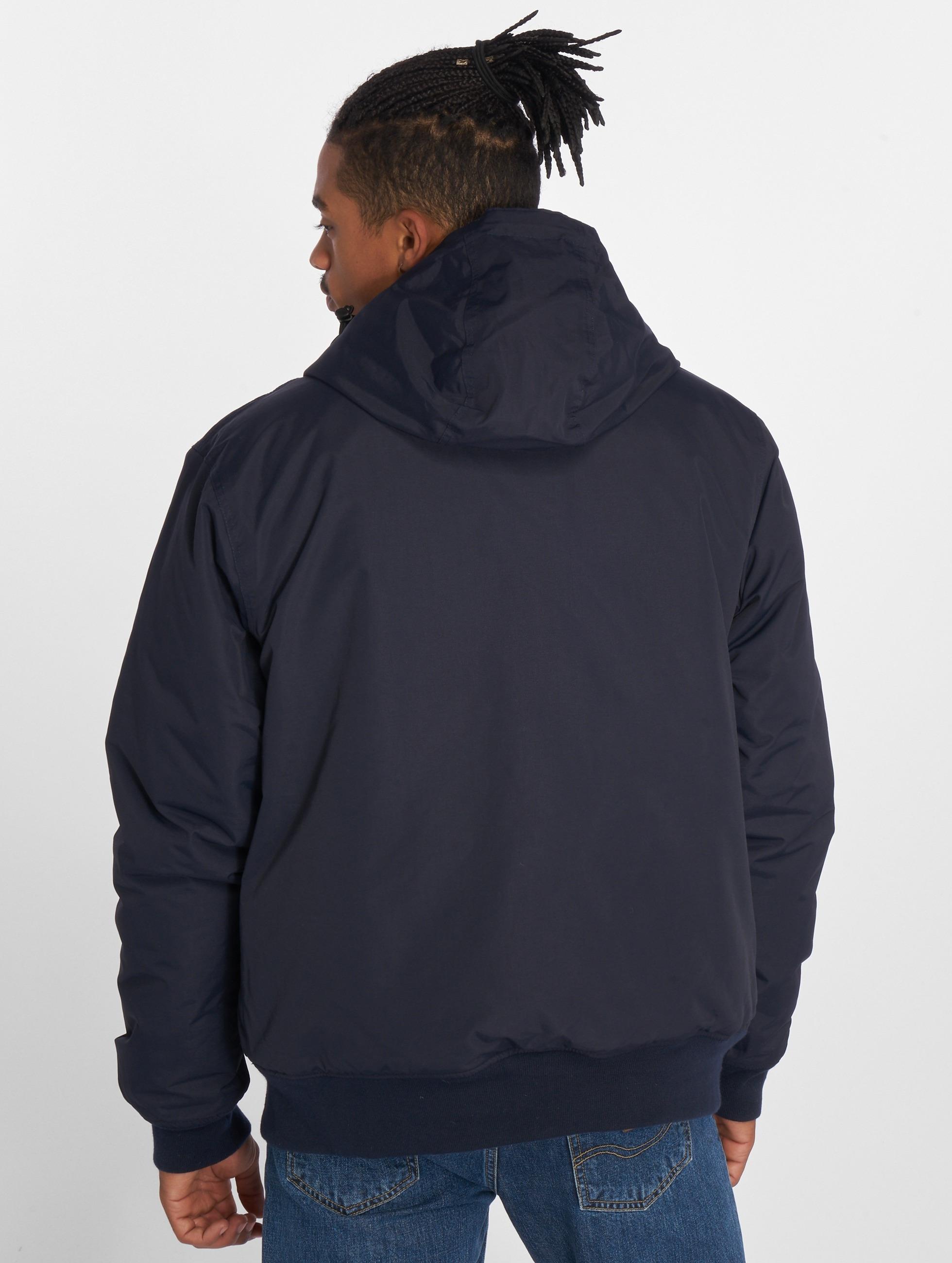 Dickies Manteau hiver Cornwell bleu