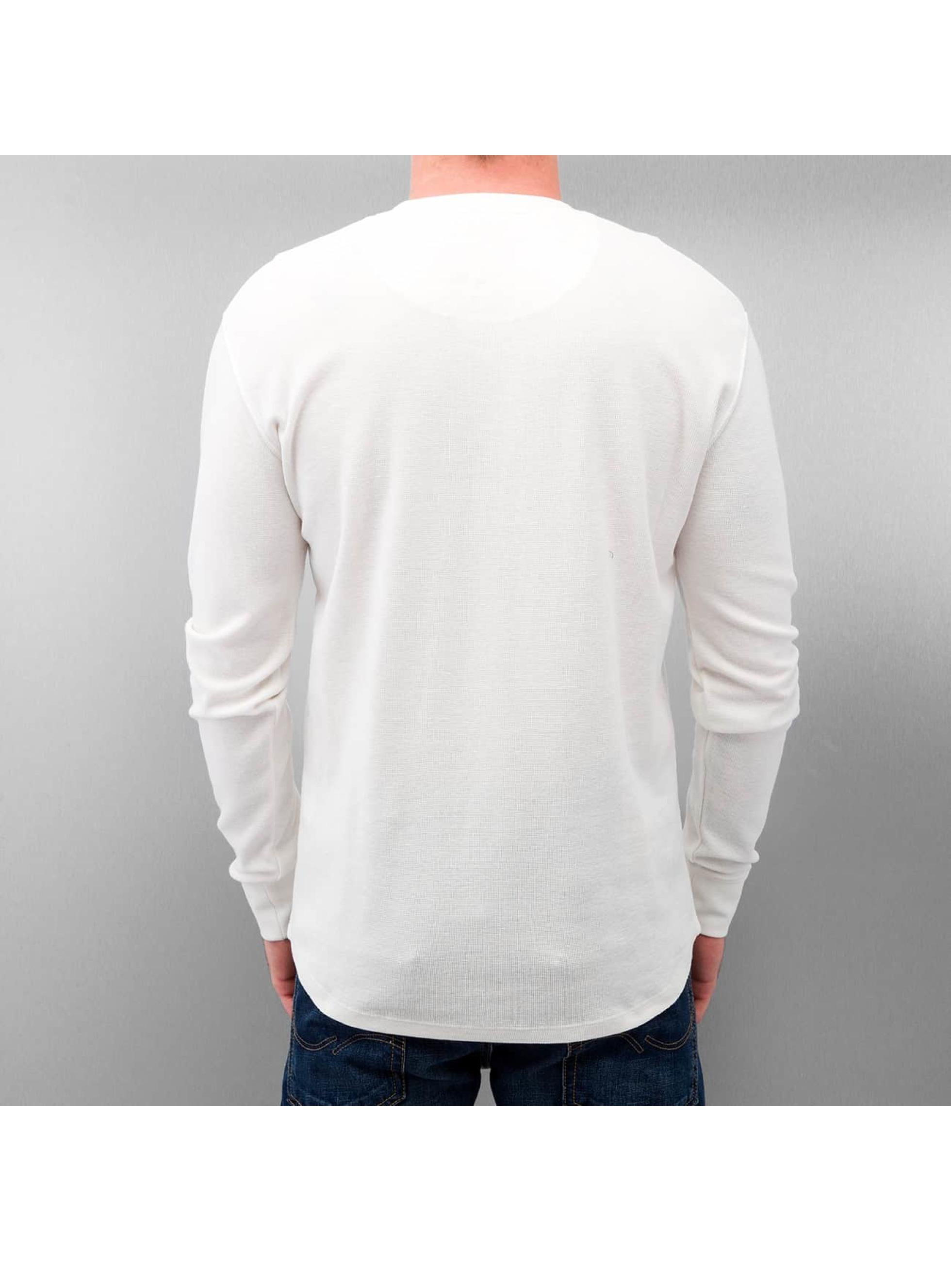 Dickies Pitkähihaiset paidat Lowell valkoinen
