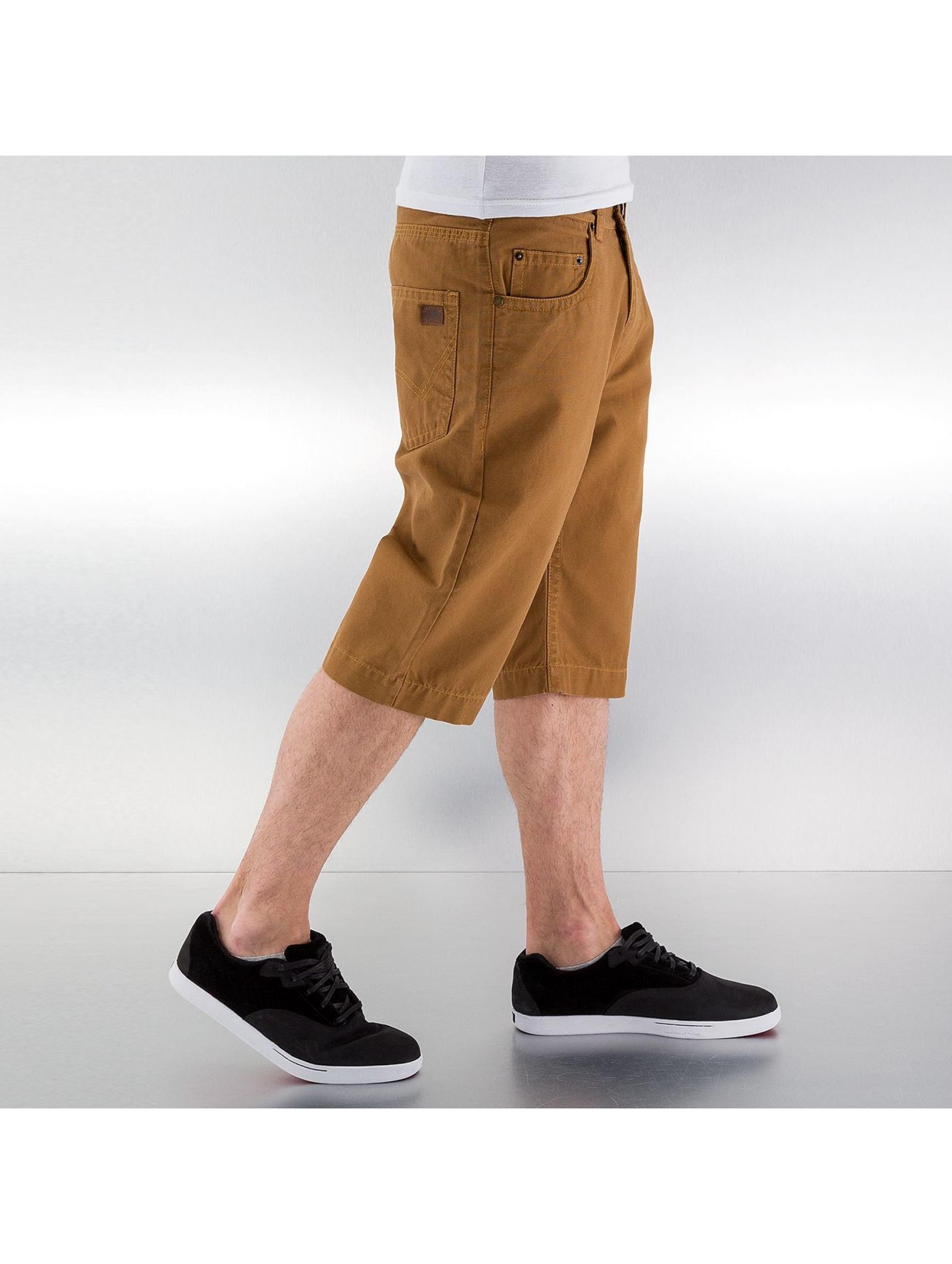 Dickies Shorts Alamo braun
