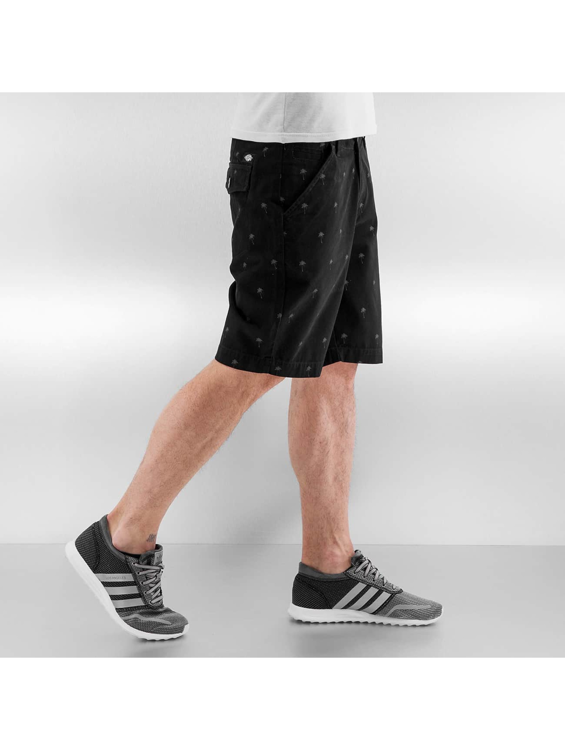 Dickies Shorts Pixley schwarz