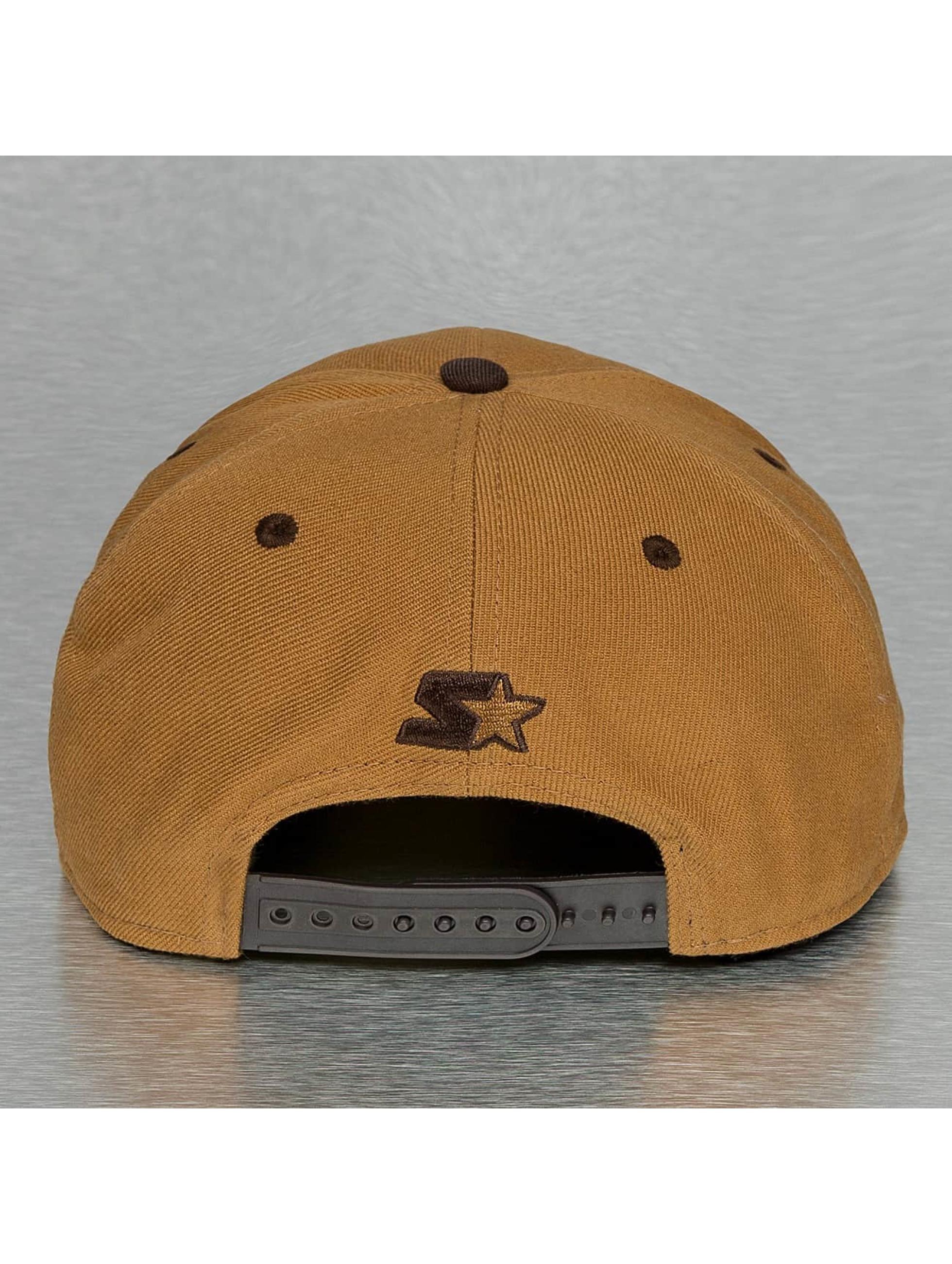 Dickies Snapback Cap Jamestown brown