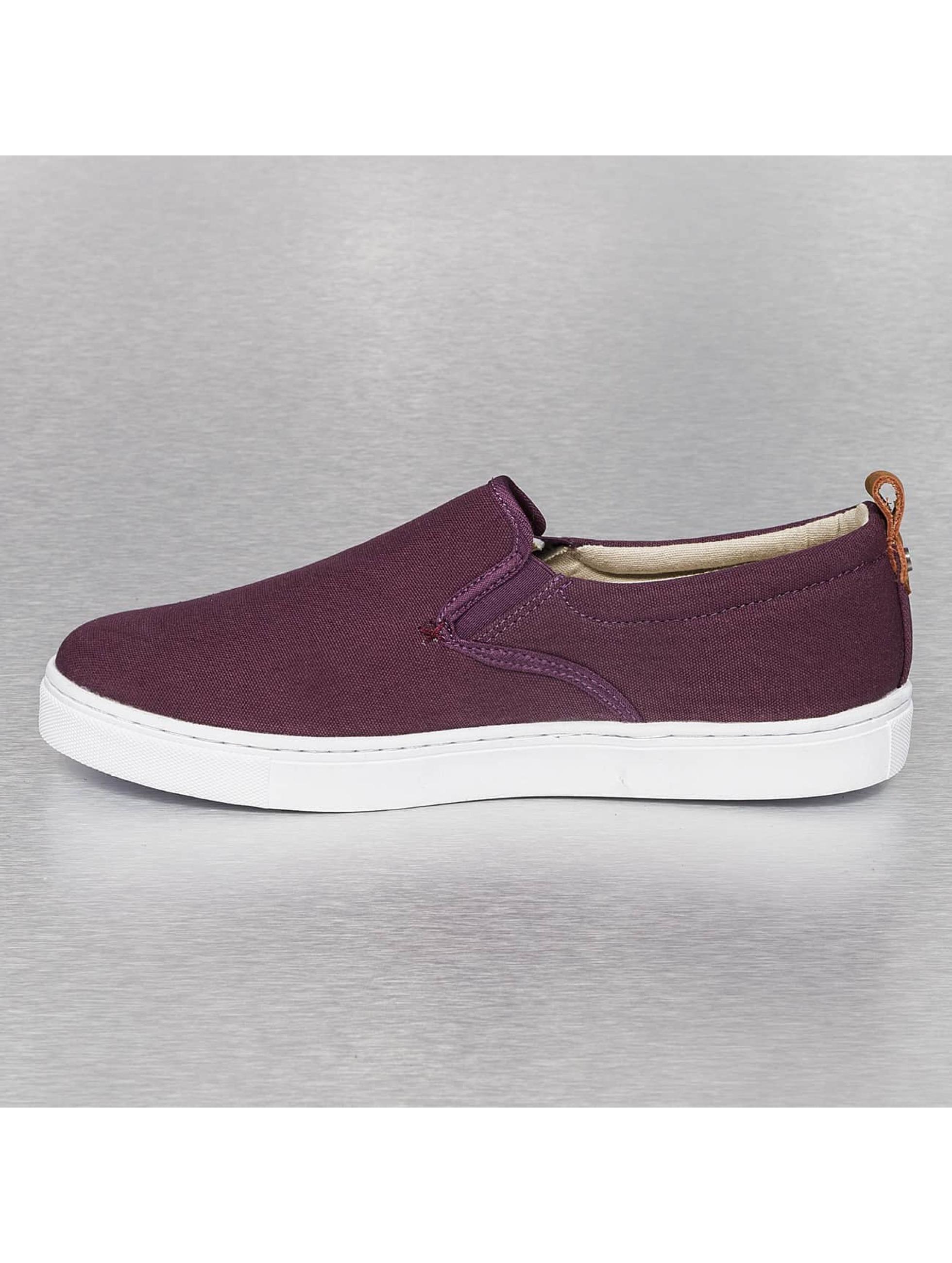 Dickies Sneaker Kansas violet