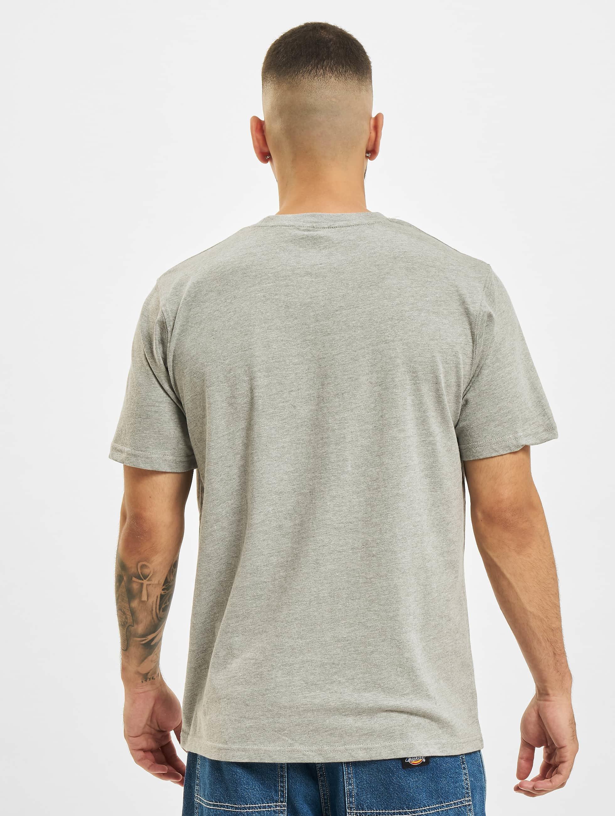 Dickies T-Shirt Horseshoe grau