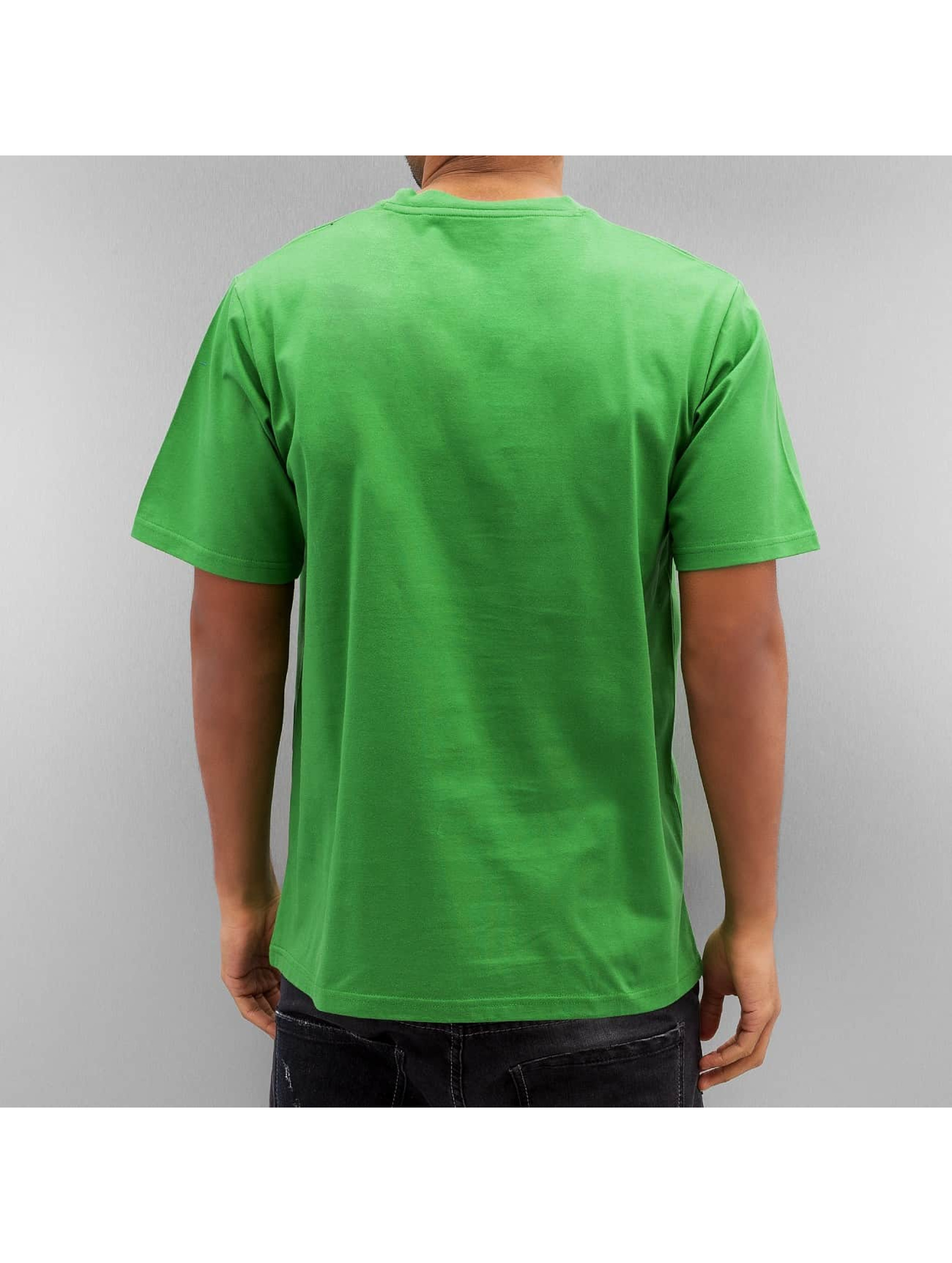 Dickies T-Shirt HS One Colour green
