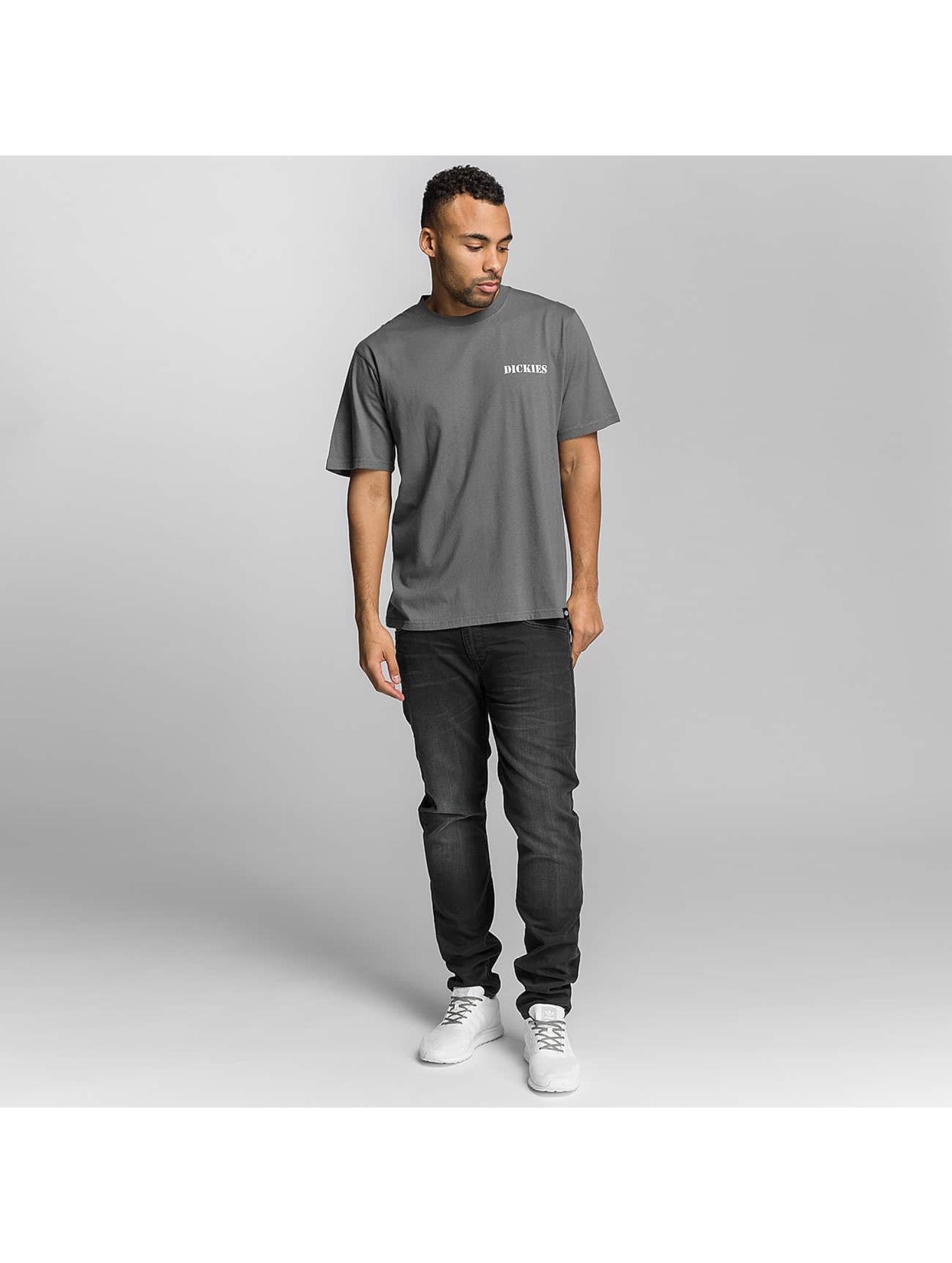 Dickies T-Shirt Cave City Gravel grey