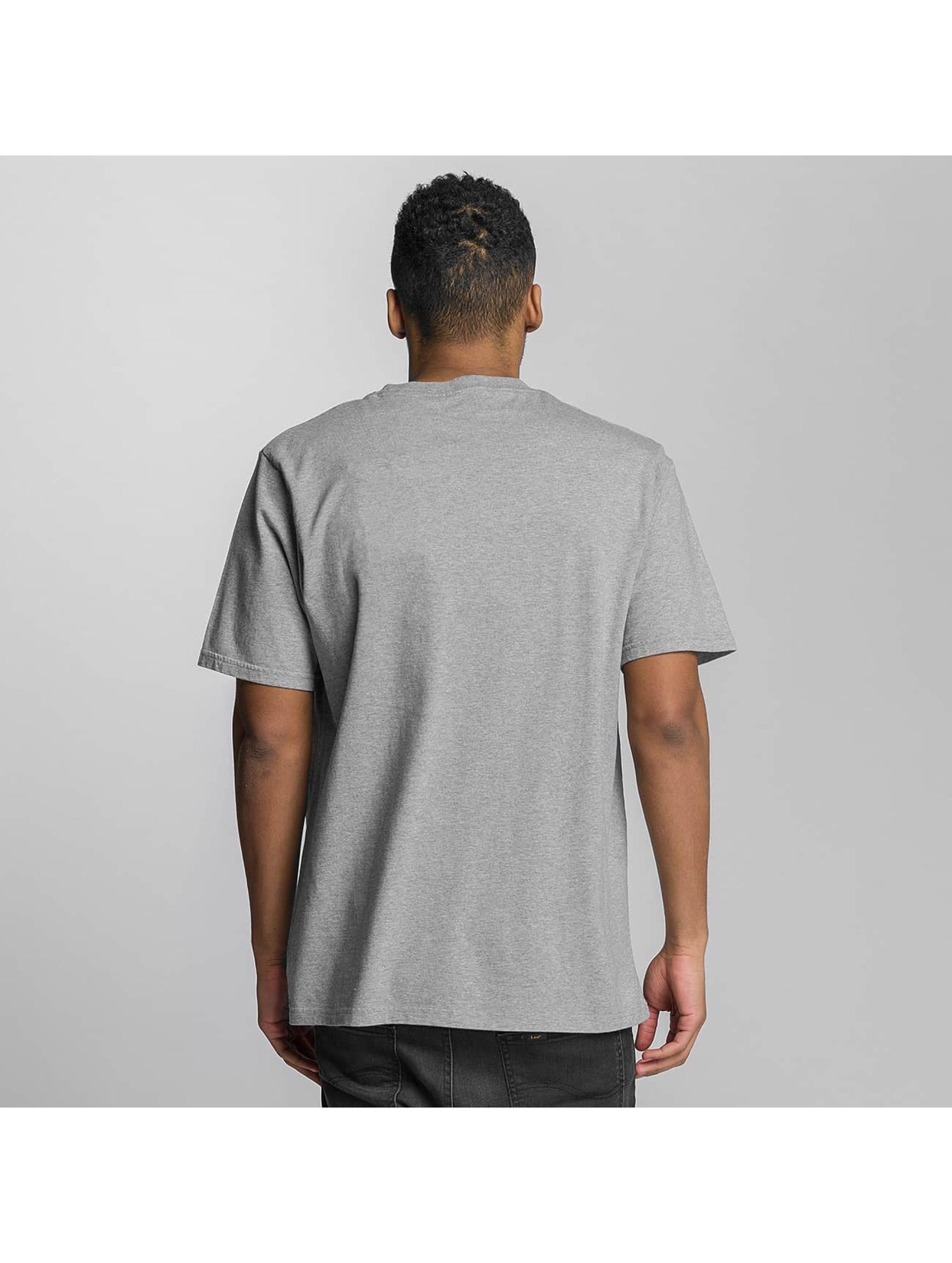 Dickies T-Shirt Gassville grey