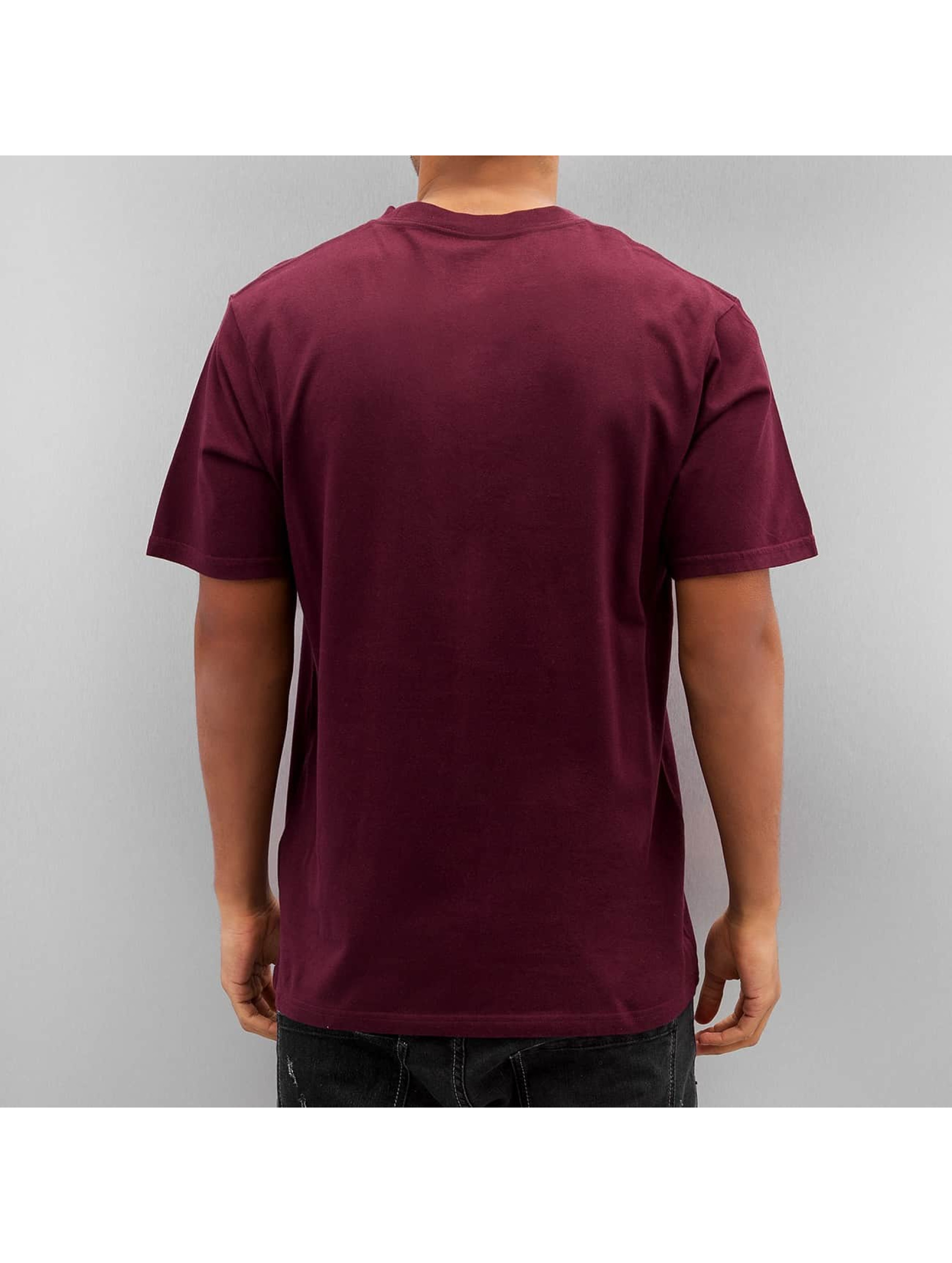 Dickies T-Shirt Finley red