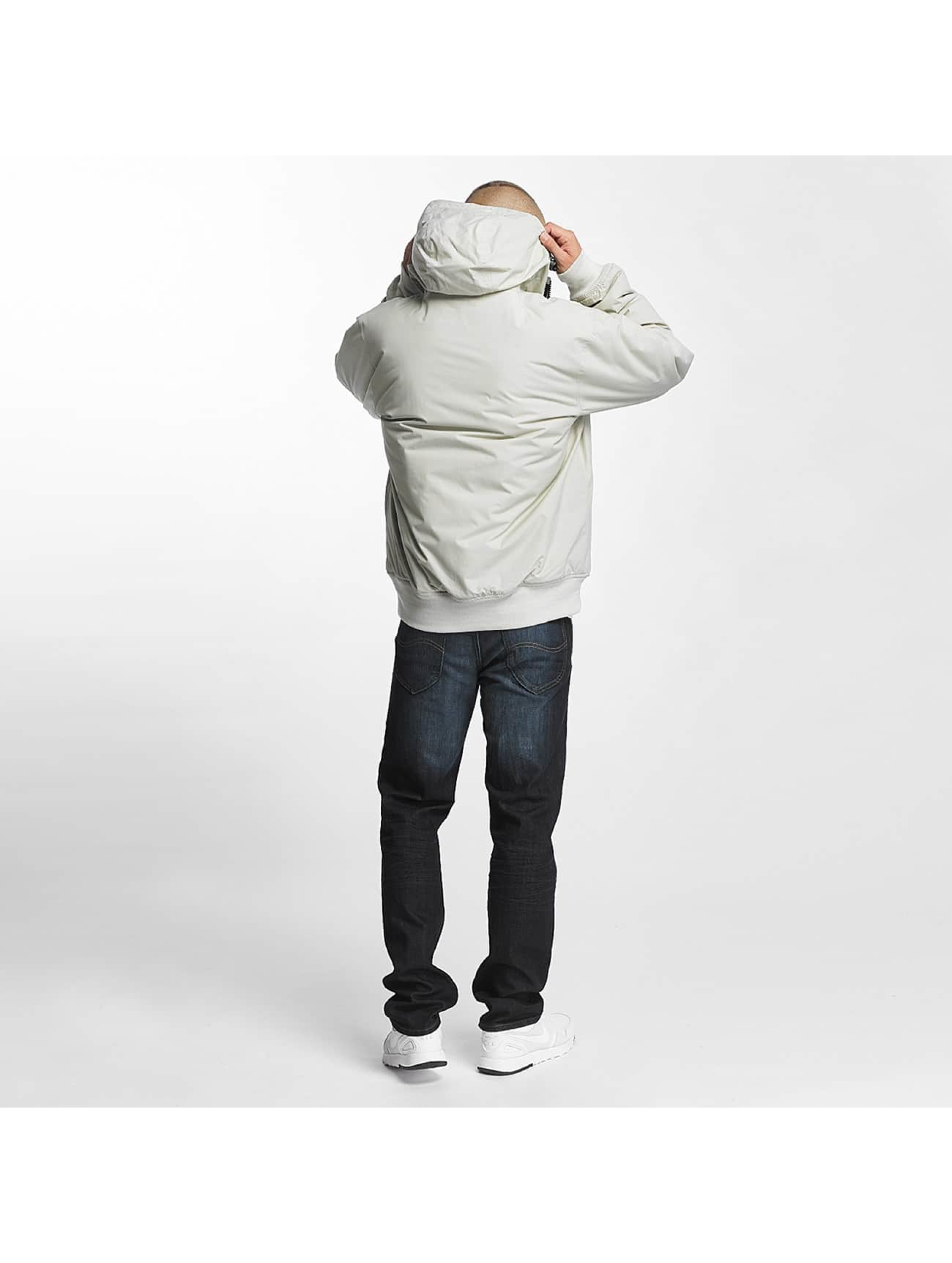 Dickies Winter Jacket Cornwell gray