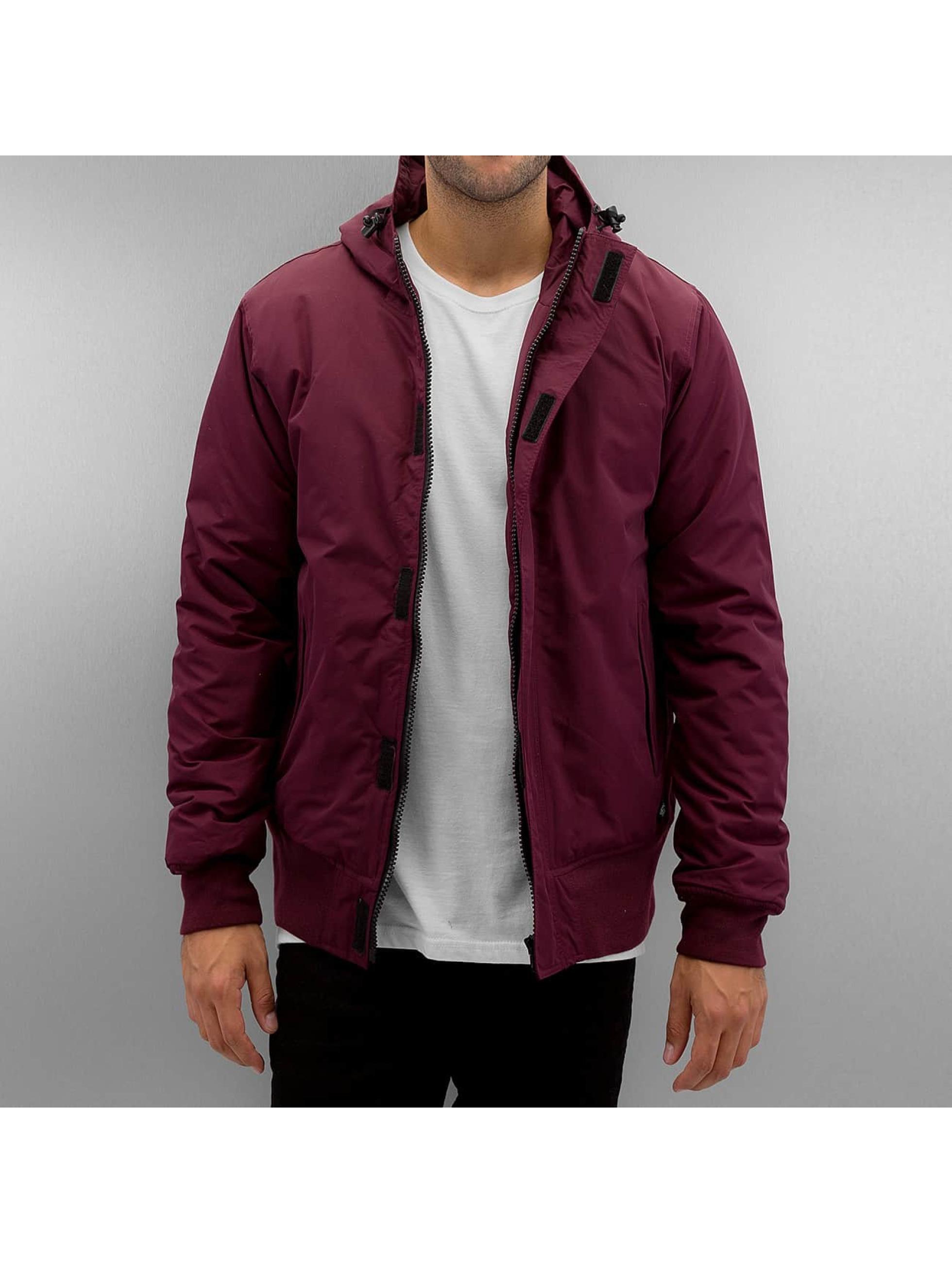 Dickies Winter Jacket Cornwell red